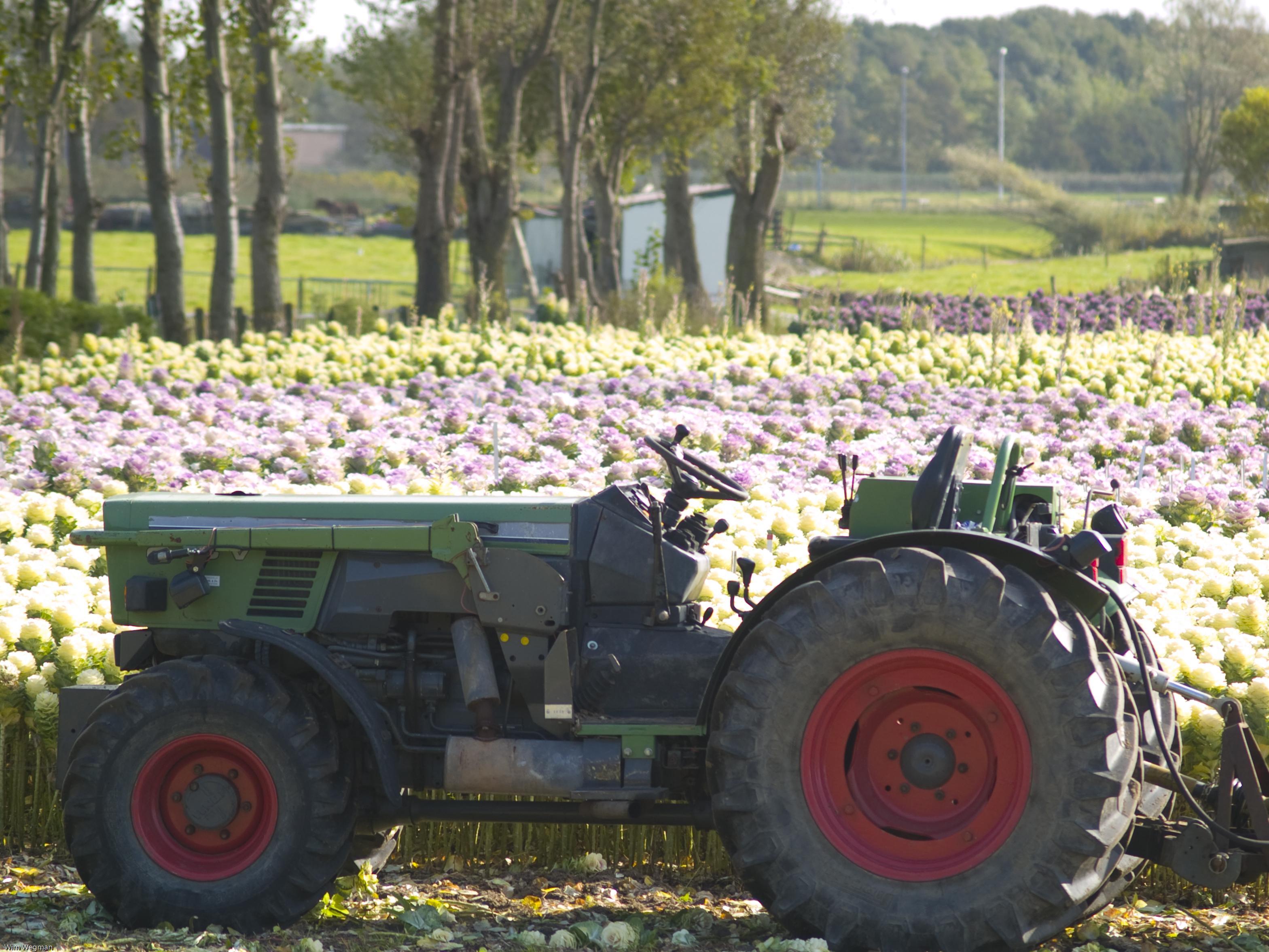 'Landbouwverkeer deze zomer al over de N207 bij Leimuiden'