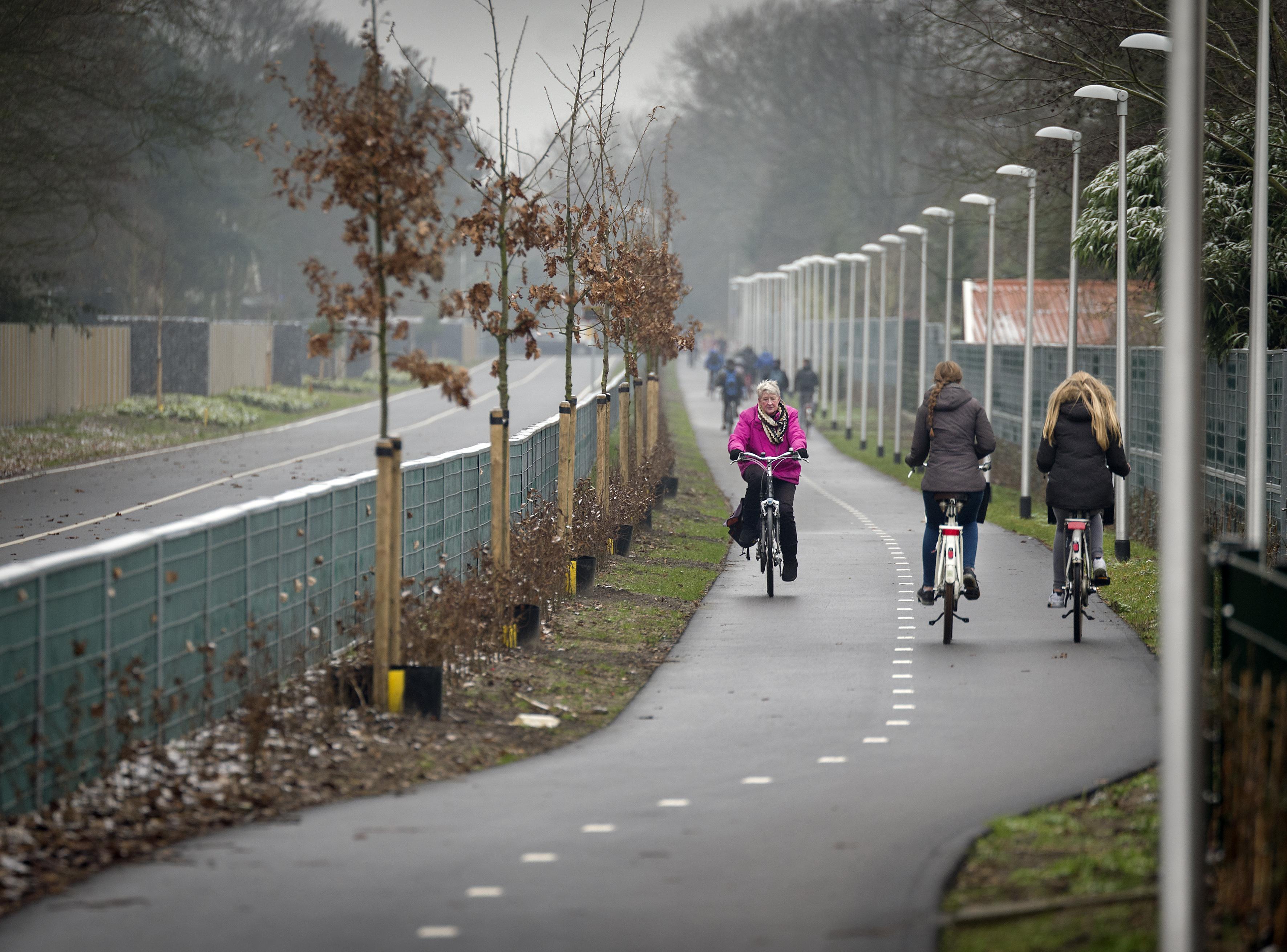 Vleermuizen hebben er geen last van, dus dagelijks 3 uur langer verlichting langs fietspad Driehuis-IJmuiden