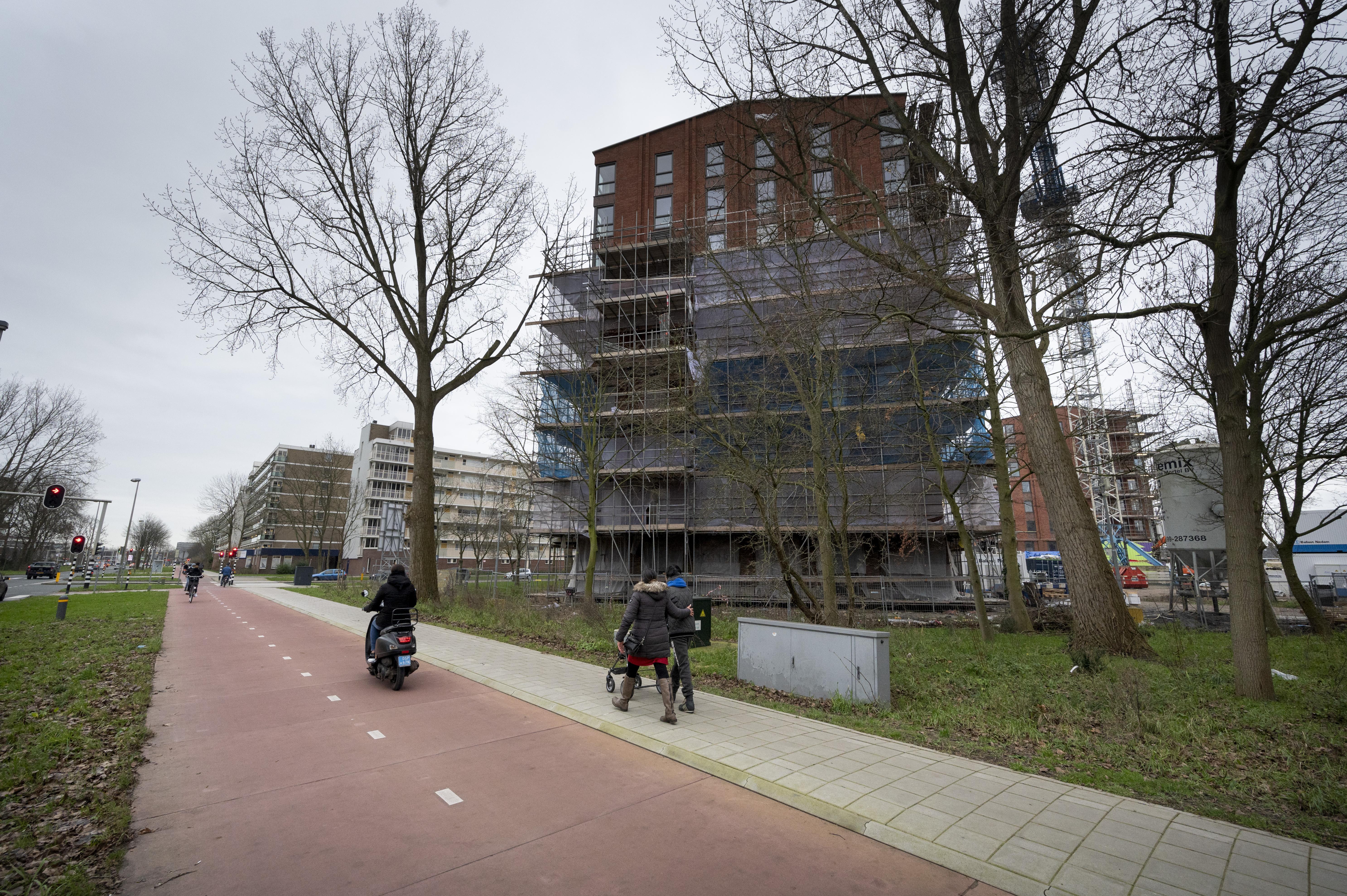 Nog eens tien bomen gekapt voor woningbouw aan de Engelendaal in Leiderdorp, Bomenbond boos
