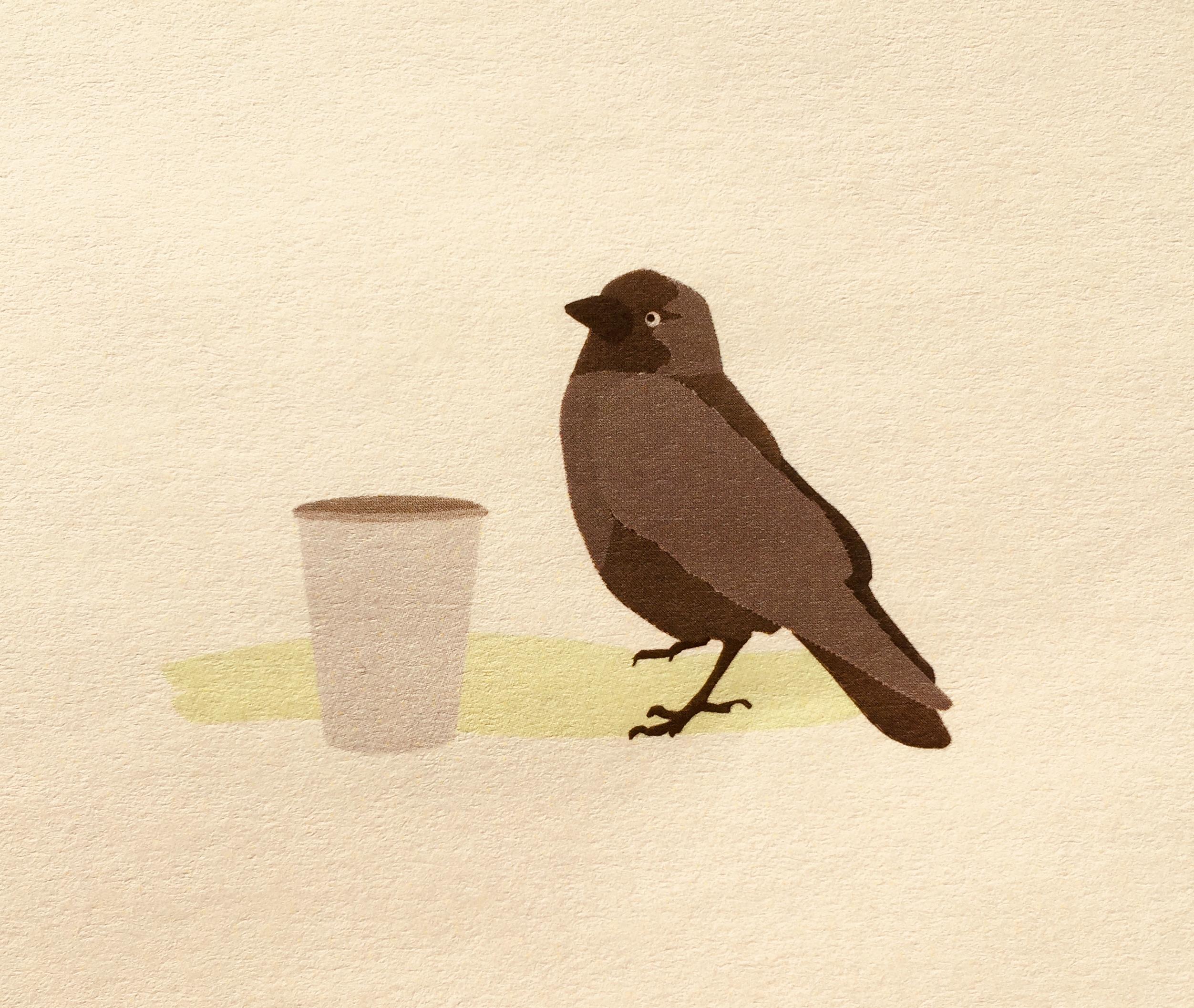 Vogels, de mysterieuze dieren van Monica Wesseling