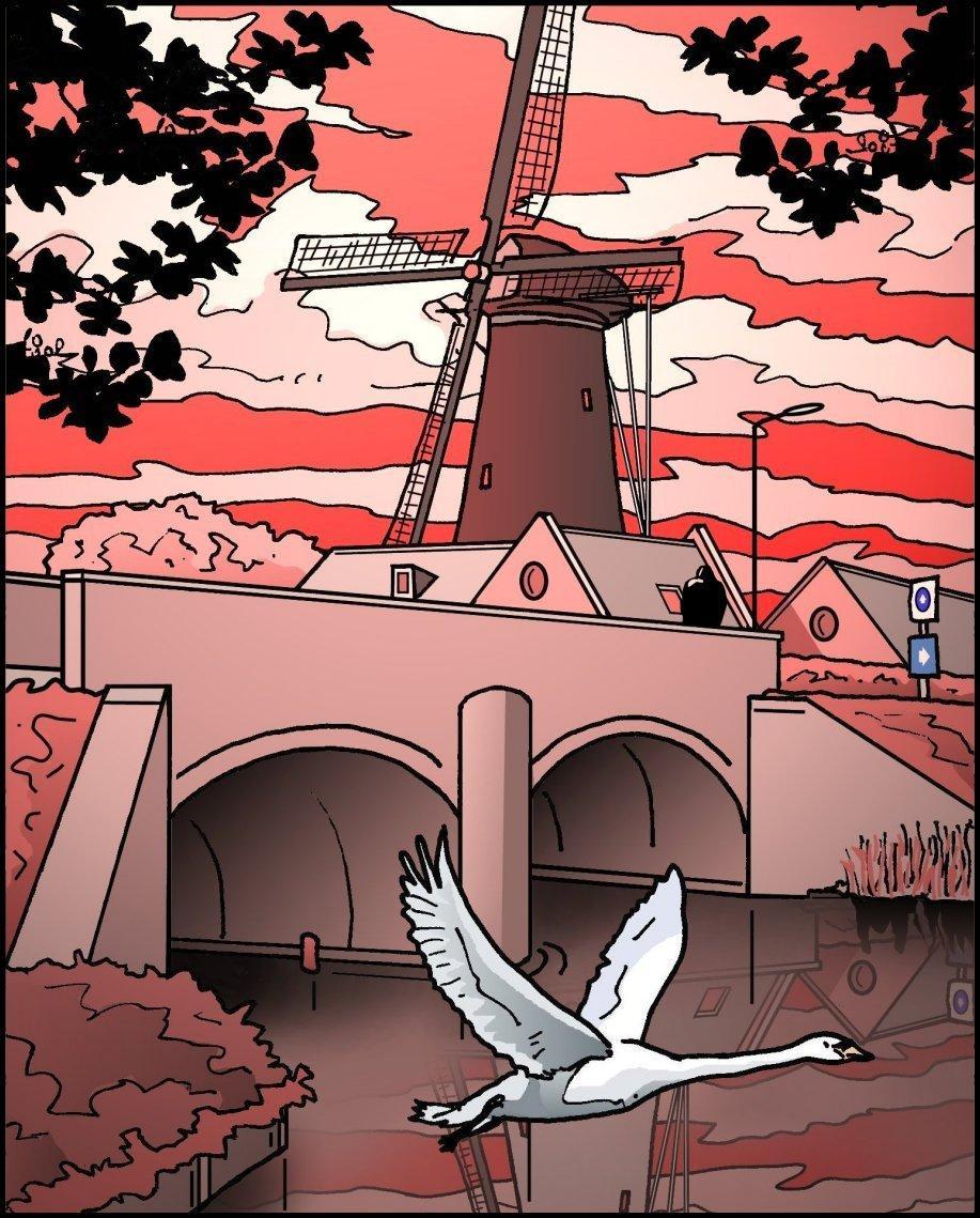 Korenmolen de Eersteling in Hoofddorp is al vijf keer verplaatst | Verscholen Haarlem