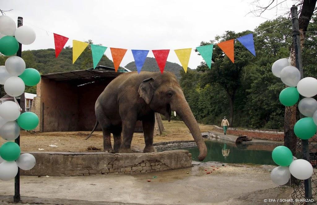 Eenzame olifant Kaavan naar Cambodja