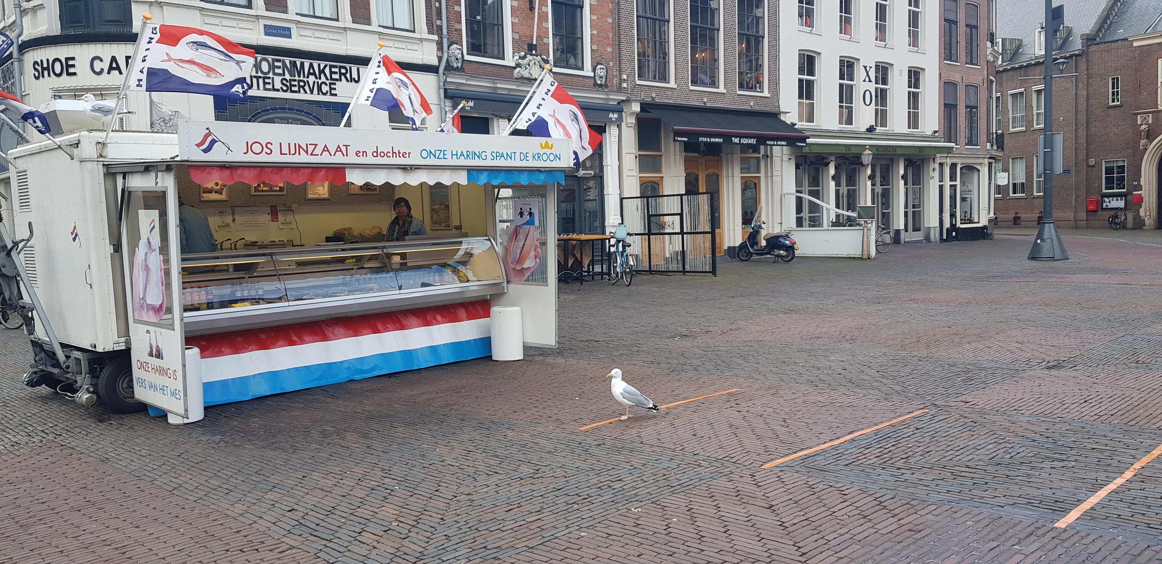 'Volgende klant graag!'; Viskraam van Jos Lijnzaat en dochter op Grote Markt in Haarlem blijft ondanks alles open