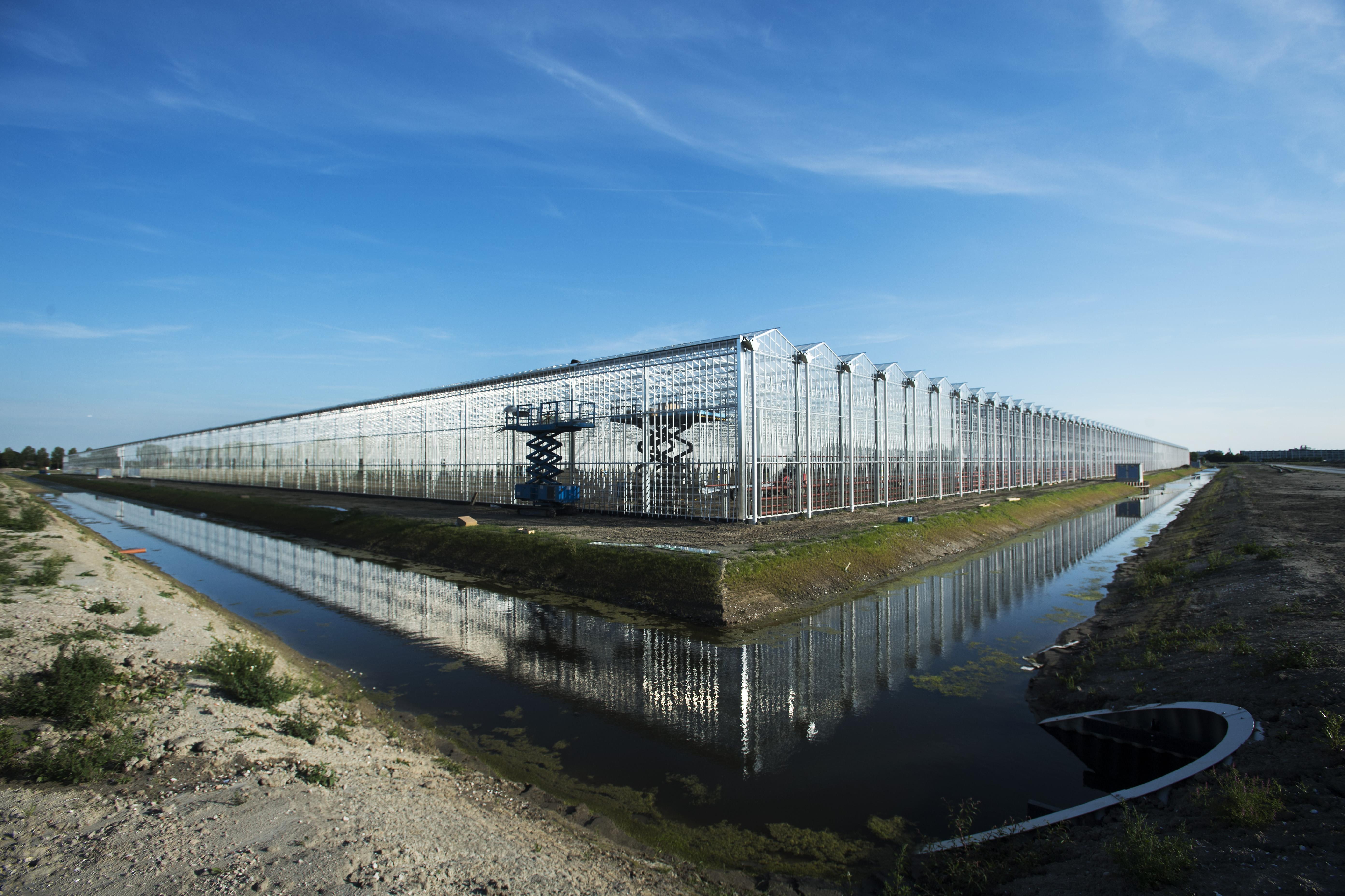 Haarlemmermeer pakt miljoenenverlies op project Primaviera. Gemeente laat uitvoerder SGN failliet gaan