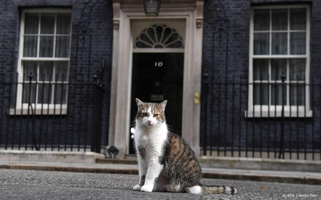 Kat Larry viert jubileum als muizenjager in Downing Street 10
