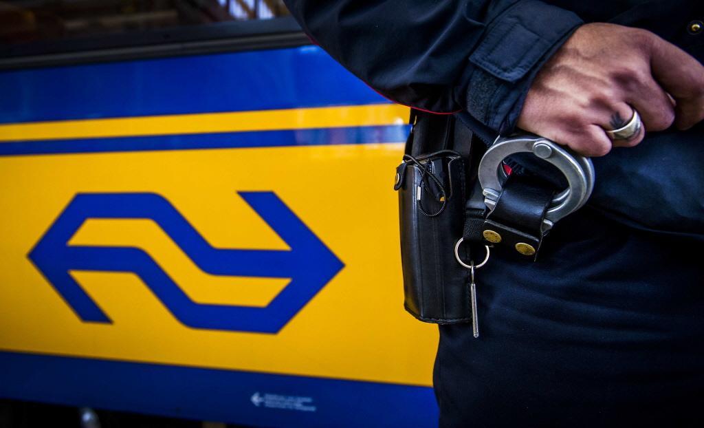 Mannen die graffiti aanbrengen op trein in Haarlem, moeten van rechter boete betalen en schade vergoeden aan NS