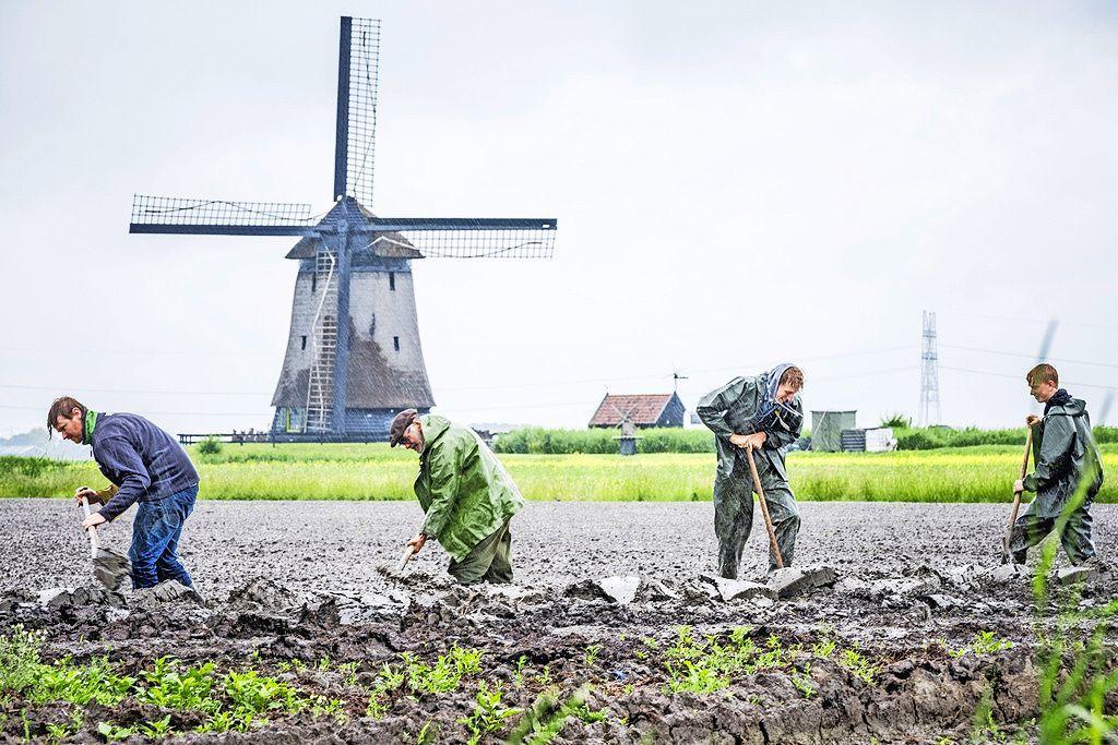 Boeren beraden zich op schadeclaims. Agrariërs met 'zeiknat' land zijn boos op het waterschap, dat in hun ogen te laat in actie is gekomen