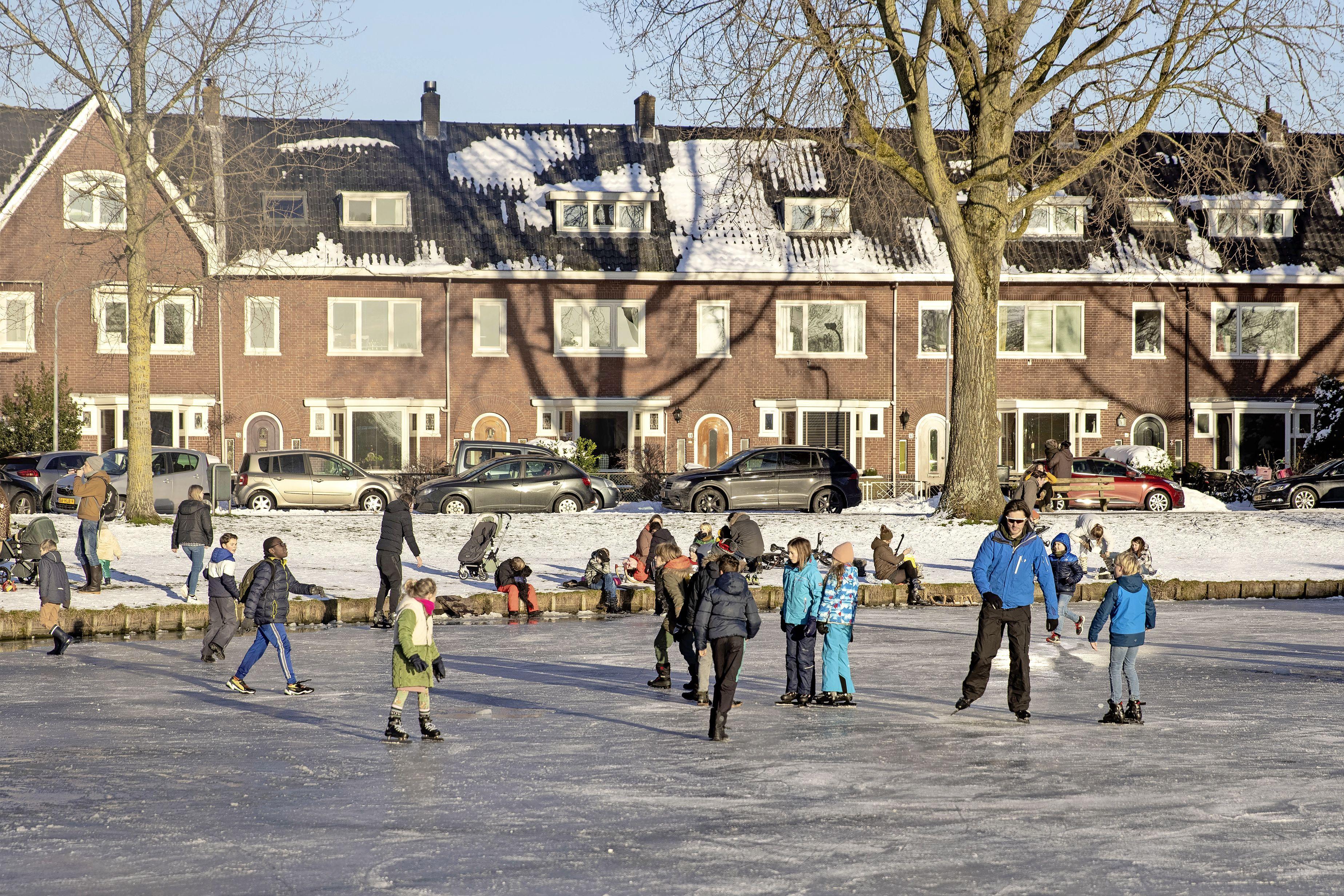 Bewoners Heussensstraat in Haarlem willen nog steeds dat grote populieren gekapt worden, maar dat gaat niet gebeuren; wethouder Michel Rog: 'Ze zijn gezond en ongevaarlijk'