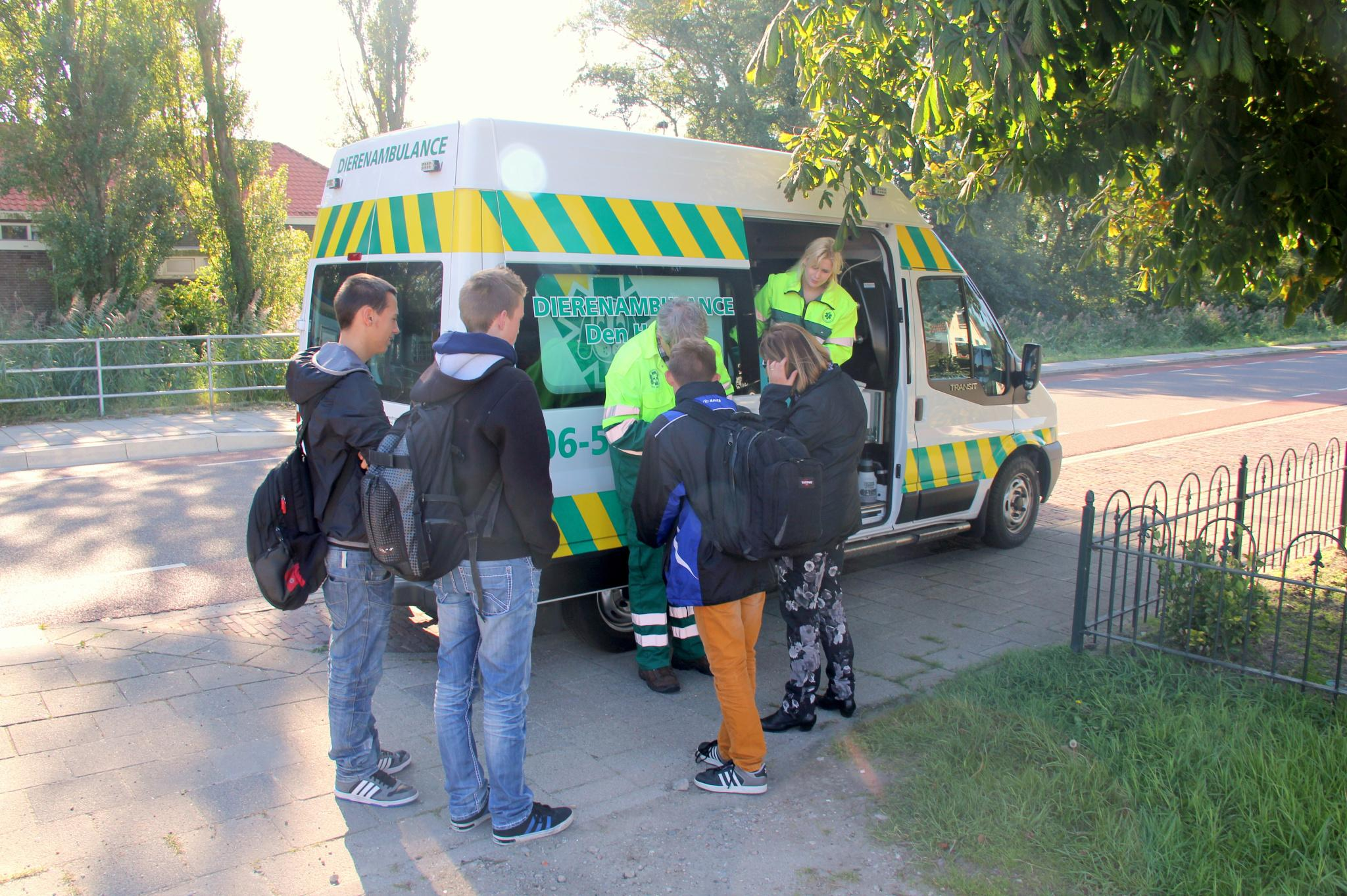 Sponsorloop met of zonder hond voor dierenambulance Den Helder-Hollands Kroon