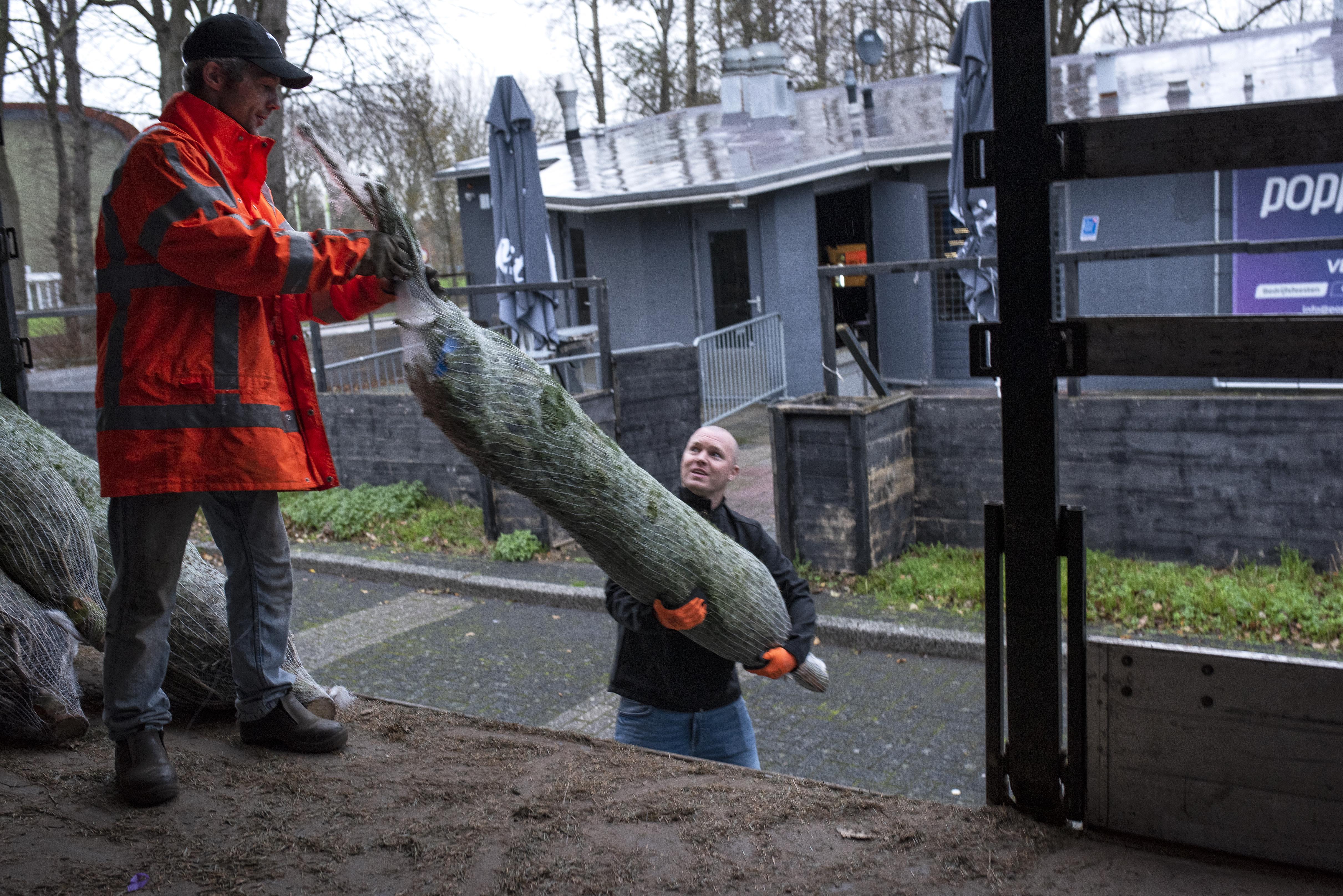 Bij Poppodium Beverwijk worden momenteel geen biertjes getapt, maar kerstbomen verkocht: 'Avontuur loopt vooralsnog anders dan gedacht'