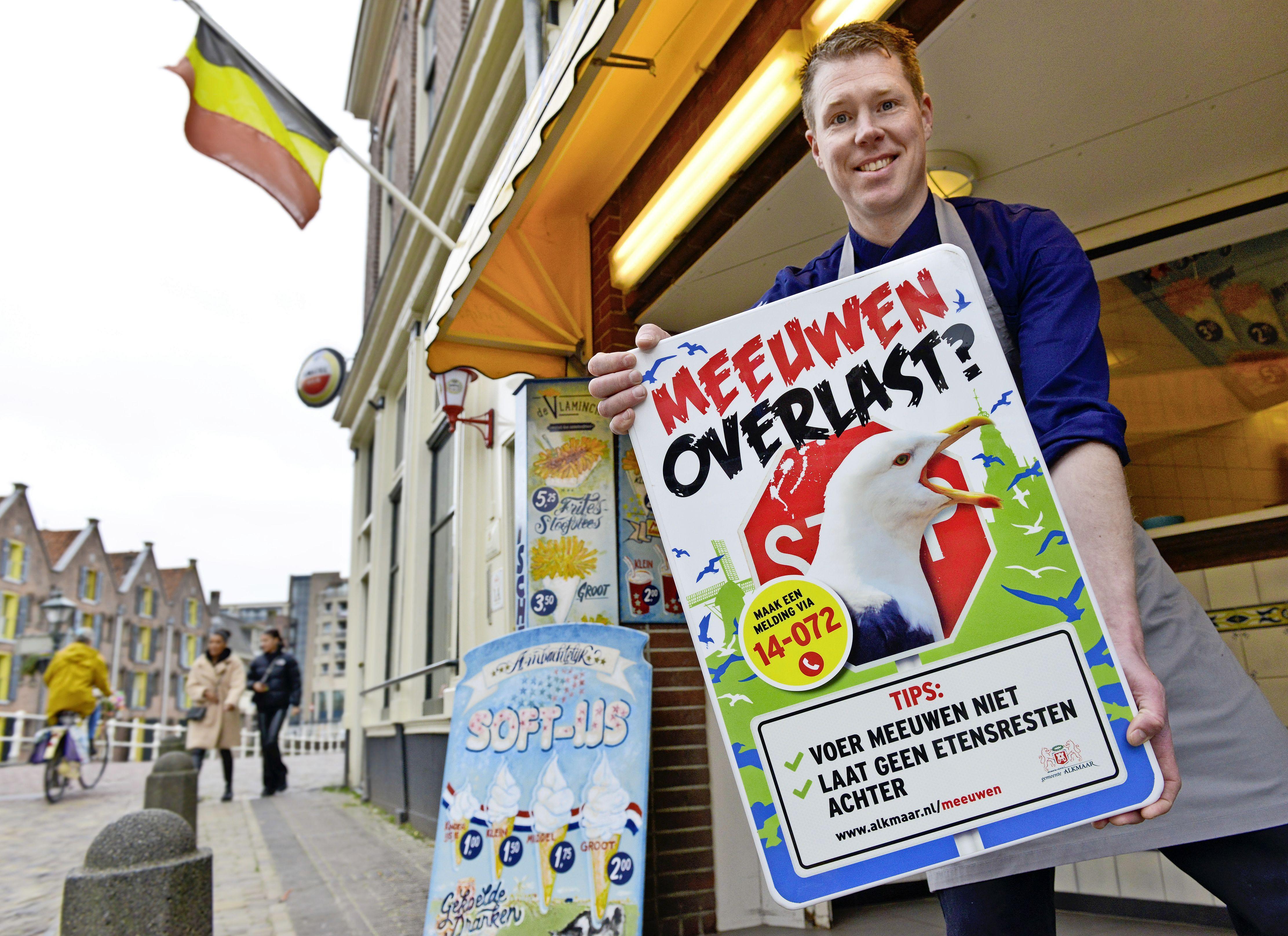 Alkmaar moet weer een jaar van meeuweneieren afblijven en start daarom maar een 'bewustwordingscampagne'