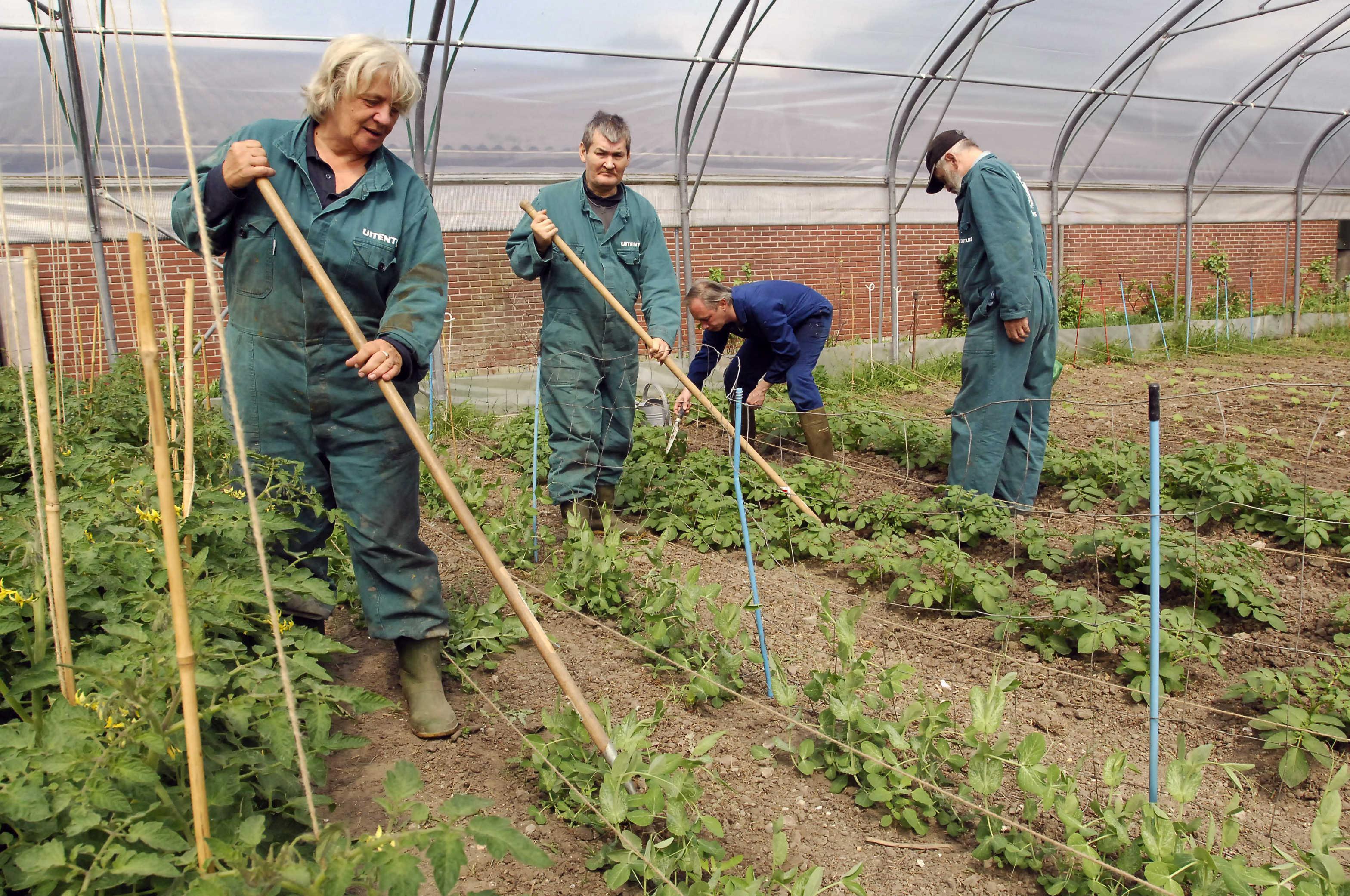 Zorgboerderijen ook open bij een strengere lockdown. 'Geestelijke schade bij vereenzaamde mensen was heel triest'