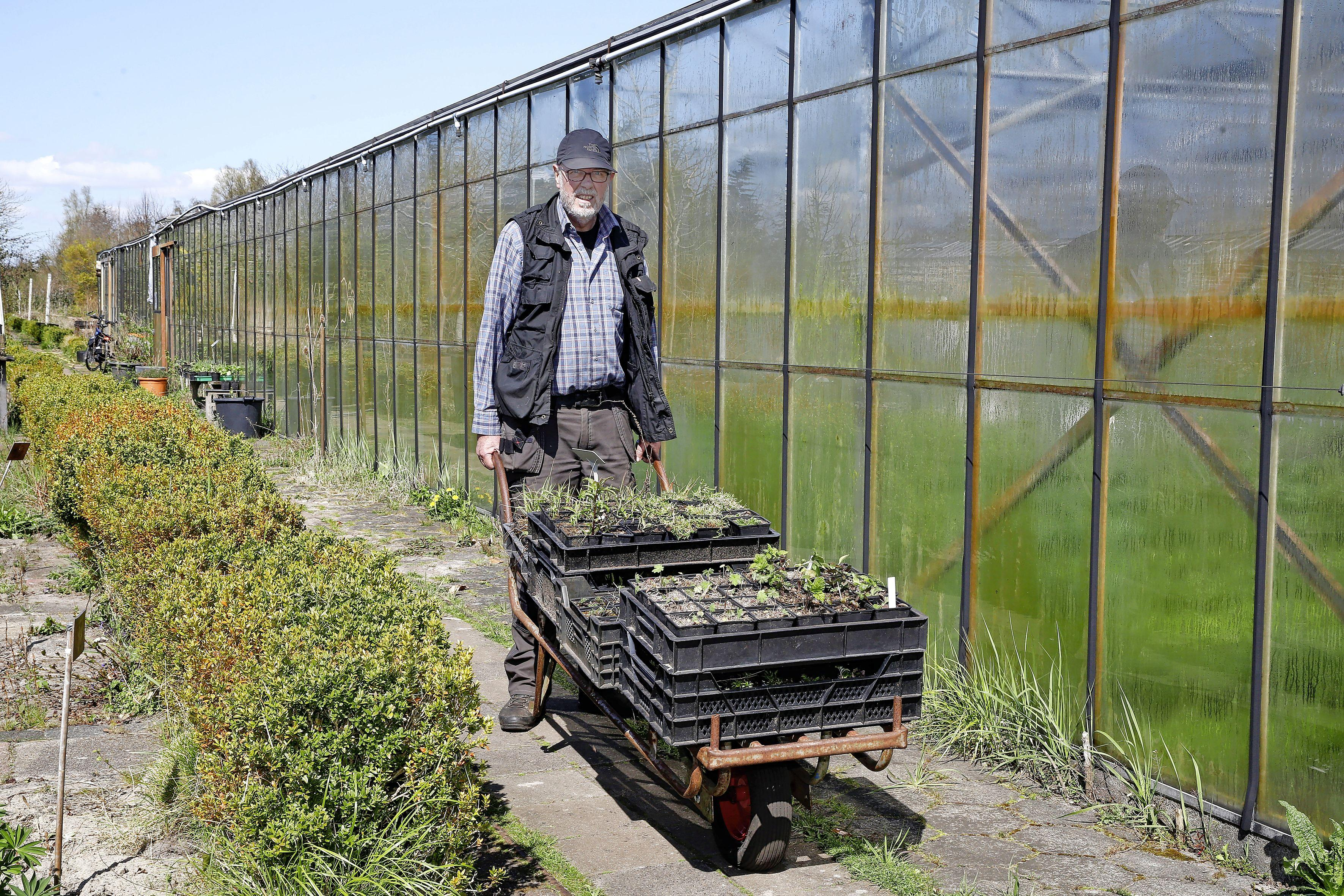 Veel mensen gingen dit weekend naar de grote tuincentra, maar koop ook eens wilde planten, zegt Martin Stevens. 'Een roos uit China staat heel mooi, maar er komt geen bij of vlinder op af'