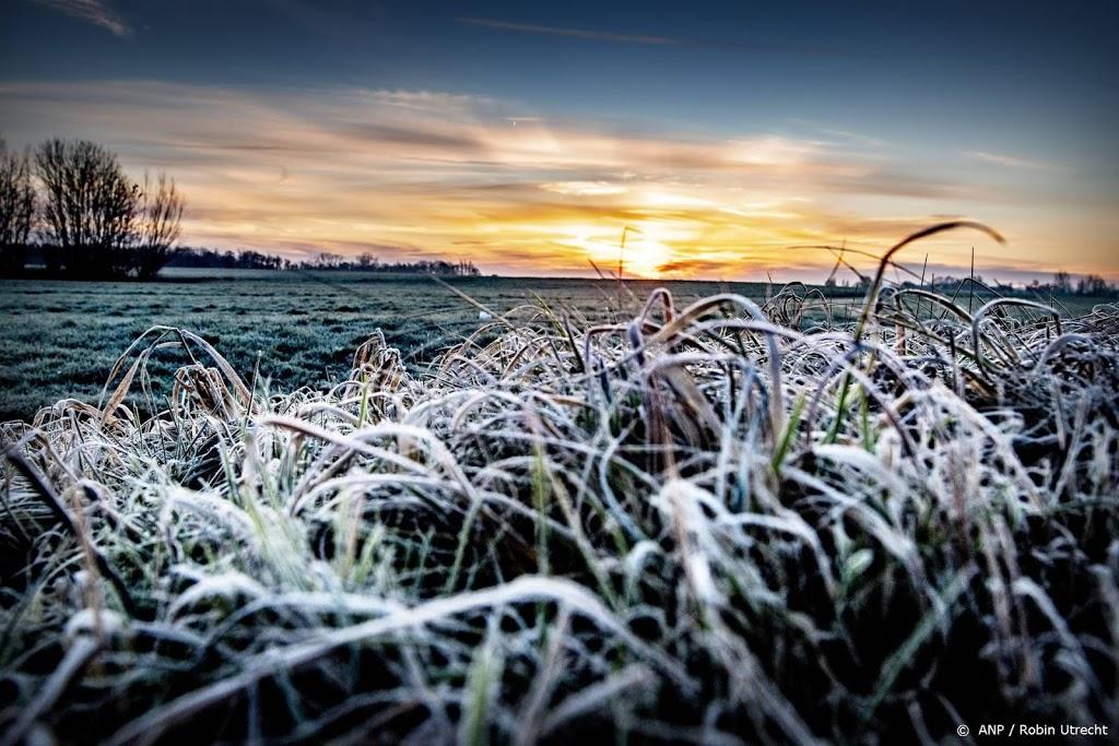 'Natuur niet van slag door zeer koud voorjaar'
