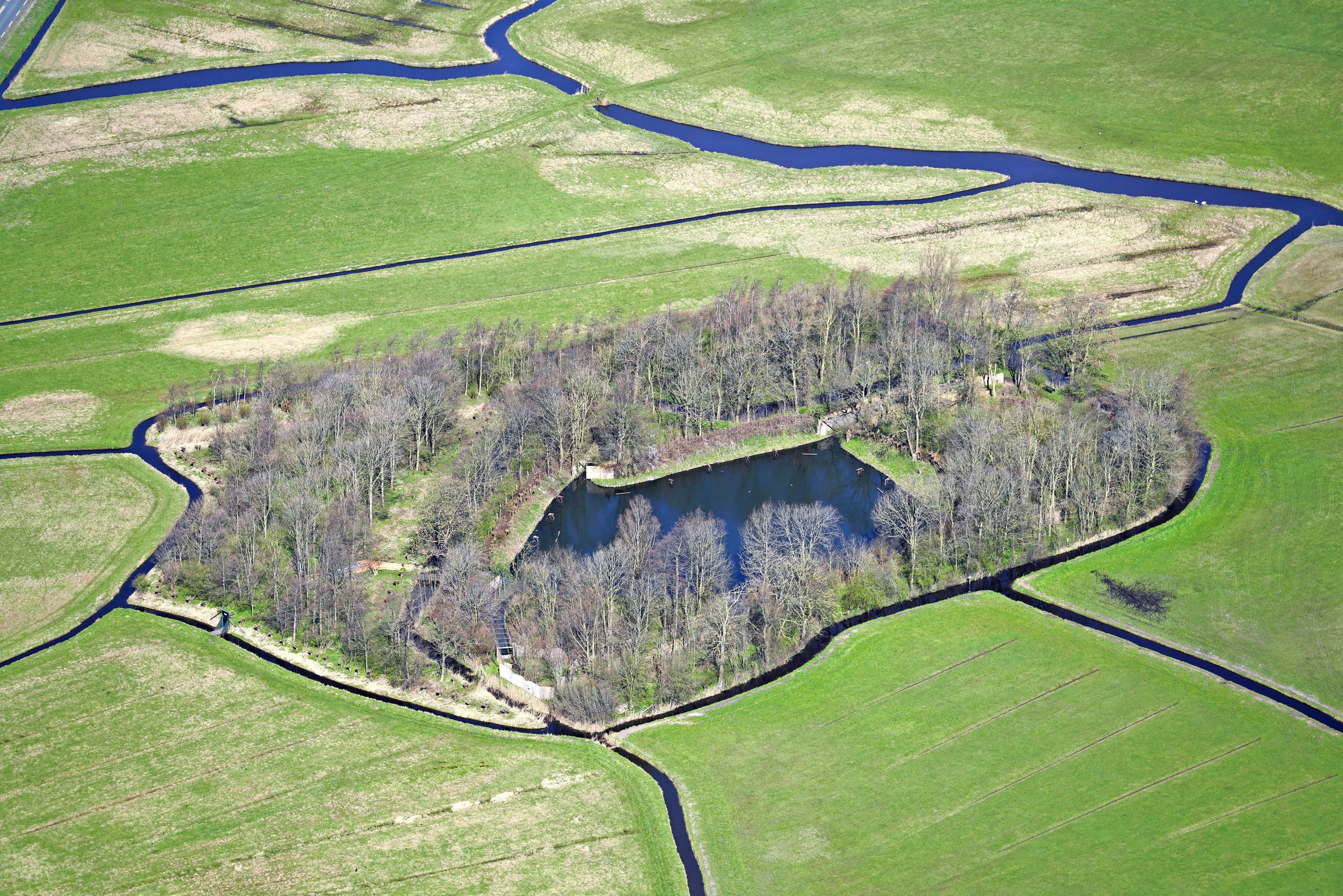Landschap Noord-Holland komt halve ton te kort voor eendenkooi in Uitgeest; start van crowdfundingsactie [video]