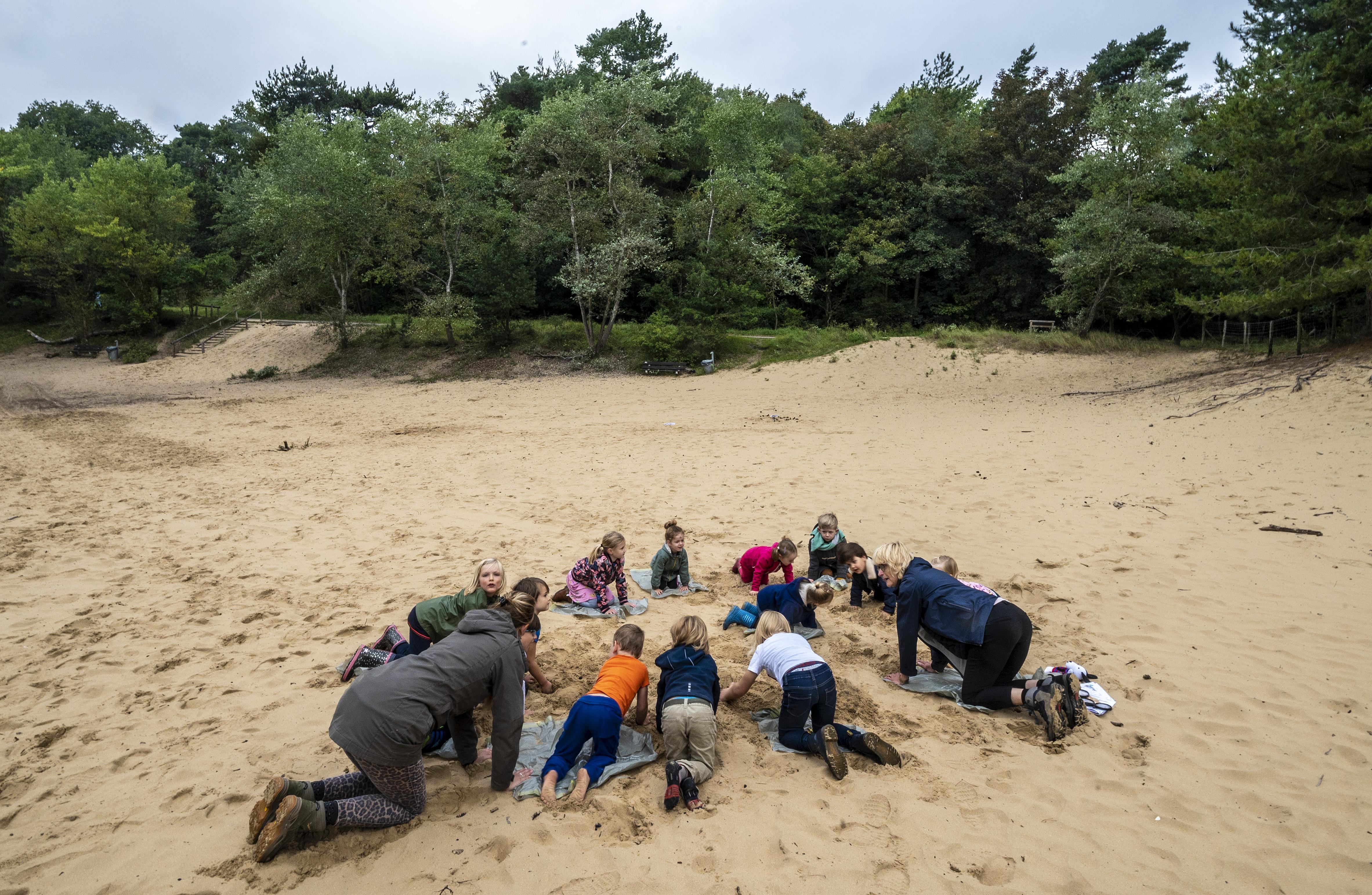 Bosdag basisschool De Schoolwerkplaats uit Santpoort-Noord: dierenvriendjesyoga, rupsen en van welk dier zijn die 'dropvormige' keutels toch?