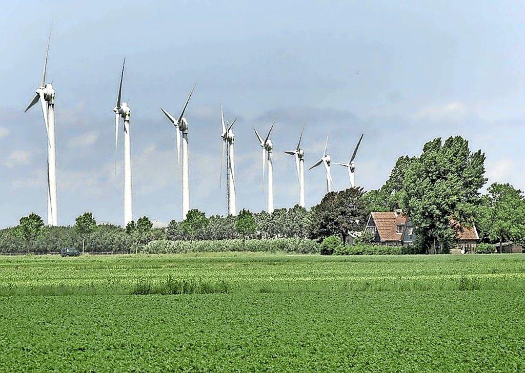 Windturbines in bos bij Lage Vuursche van de baan; De Bilt gaat locatie niet verder onderzoeken