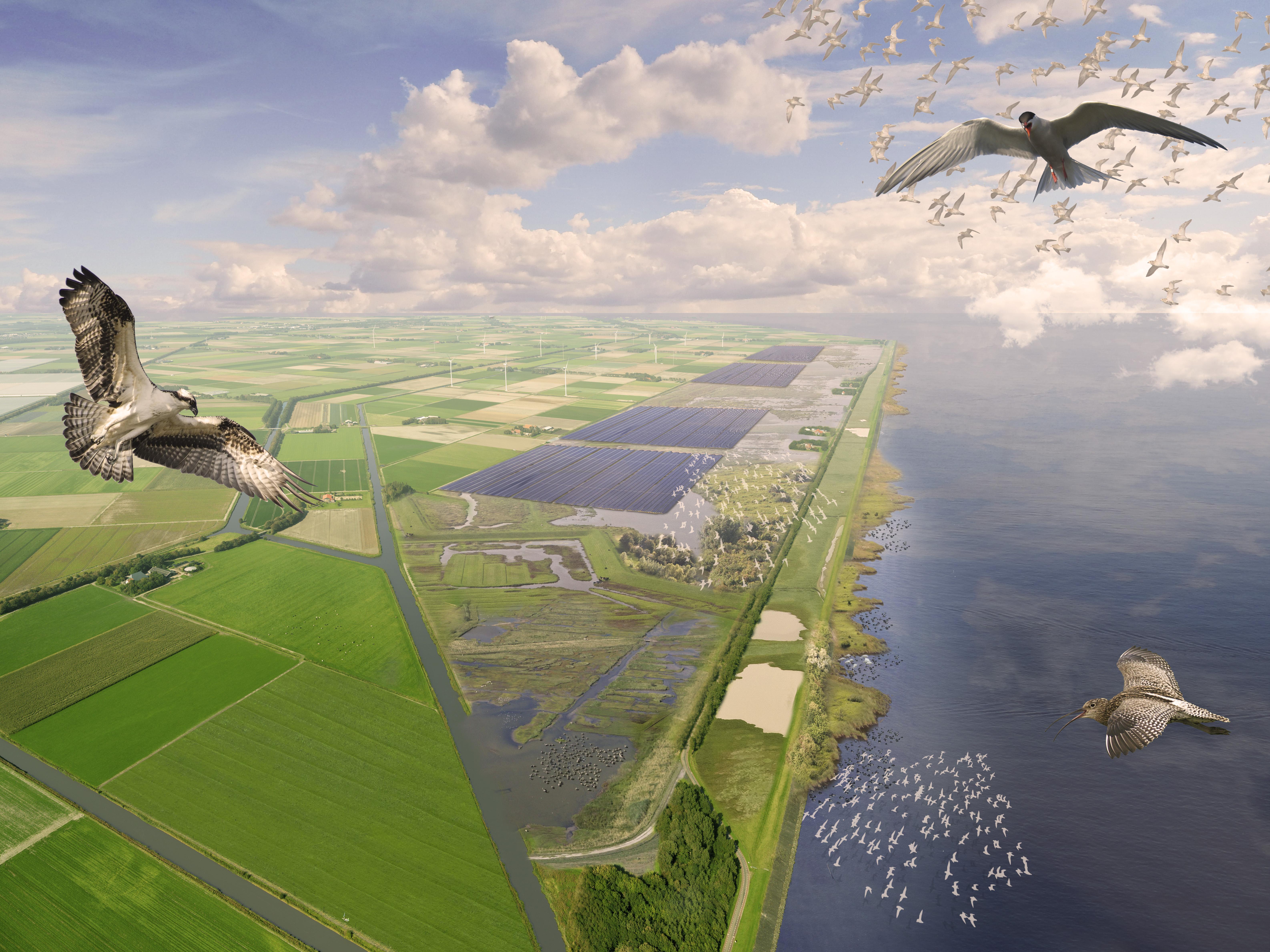Zonne-atollen in het IJsselmeer? Een schijnoplossing | Opinie