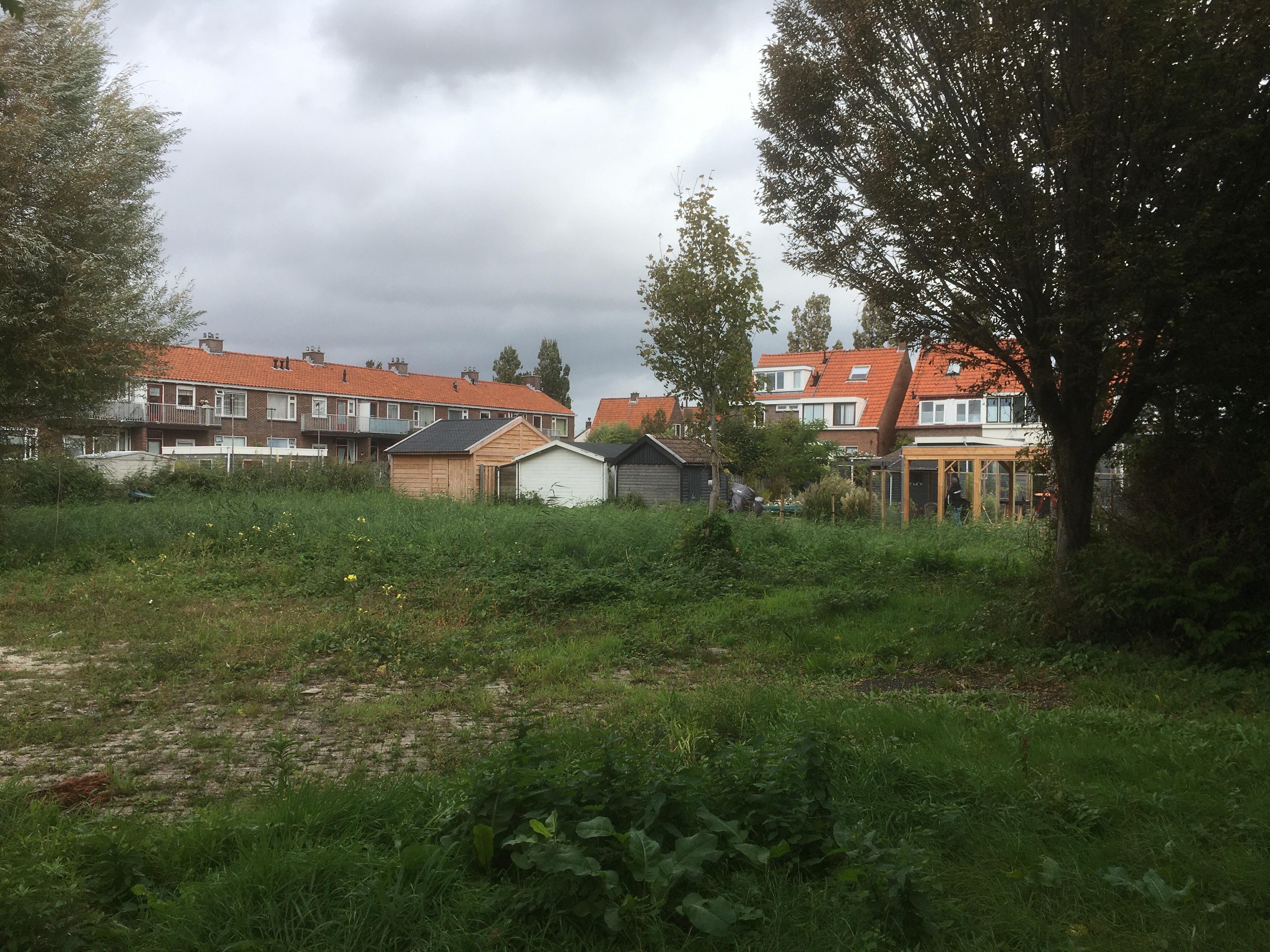 Tien tiny houses op binnenterrein van Lissese bloemenbuurt