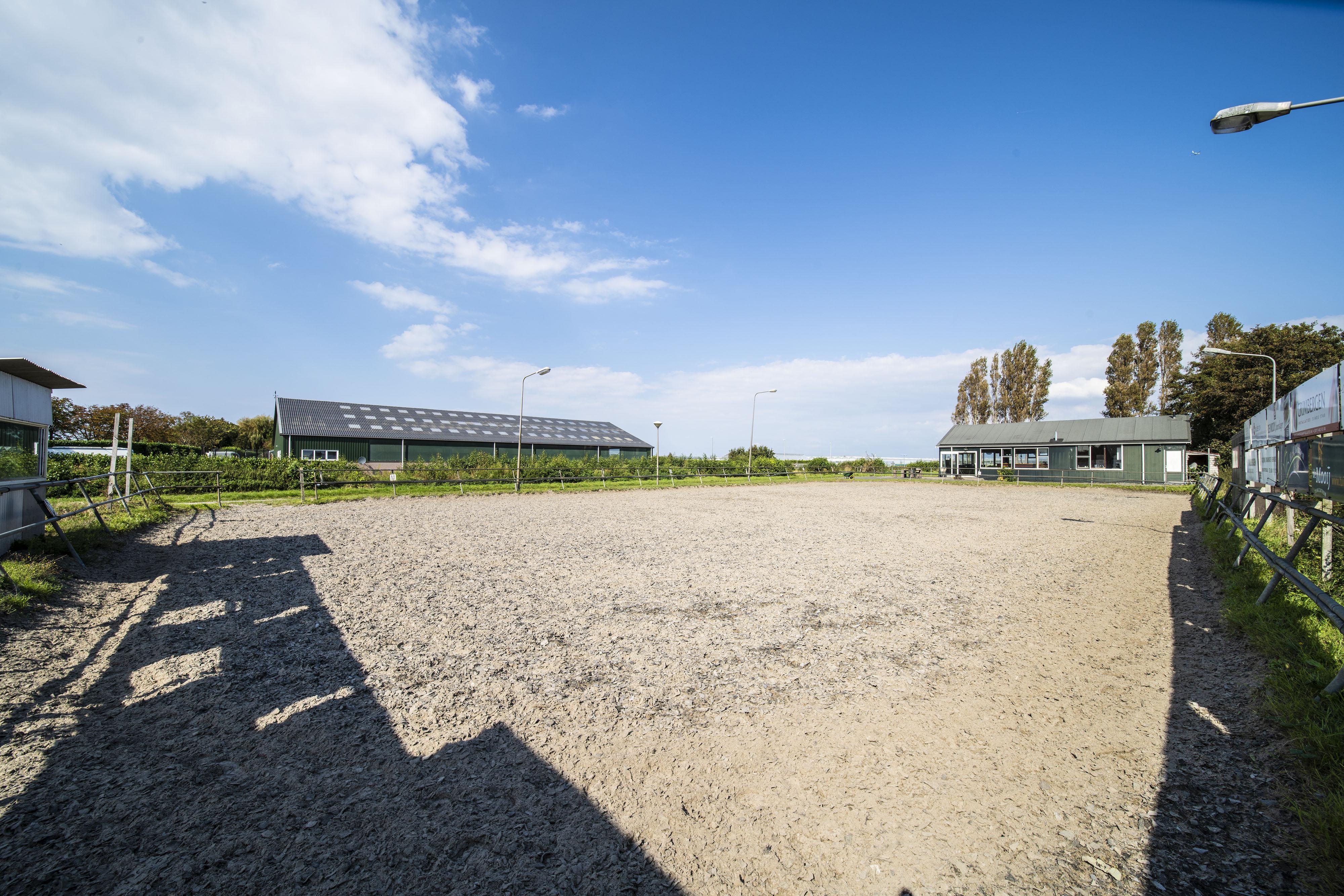 Rijnsburgse paardrijvereniging De Burchtruiters krijgt vlak voor ontruiming van manege nieuwe plek aangeboden: 'Er zit in elk geval beweging in'