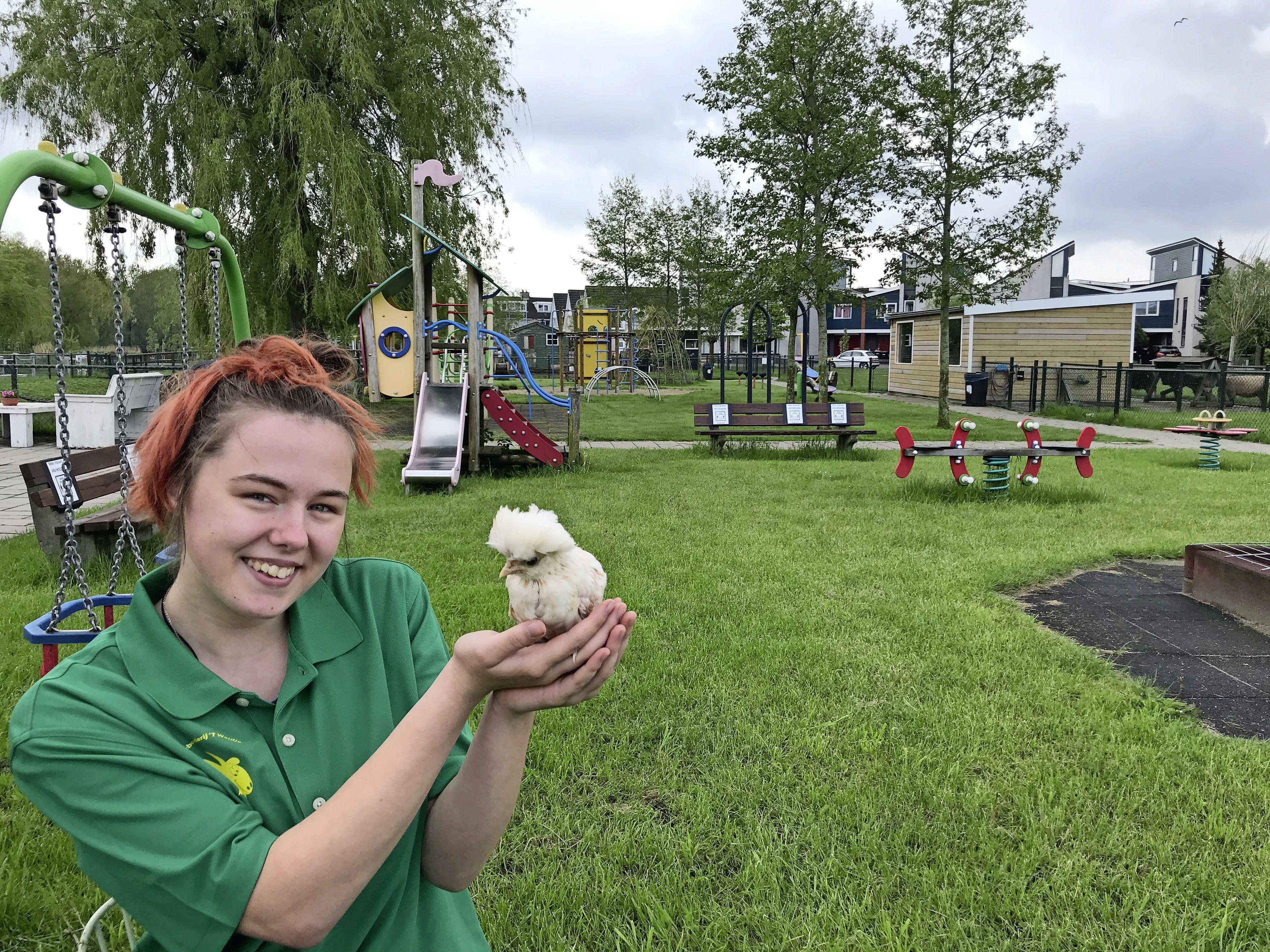 De kinderboerderijen zijn vanaf woensdag weer open, maar alleen toegang tot de buitenverblijven