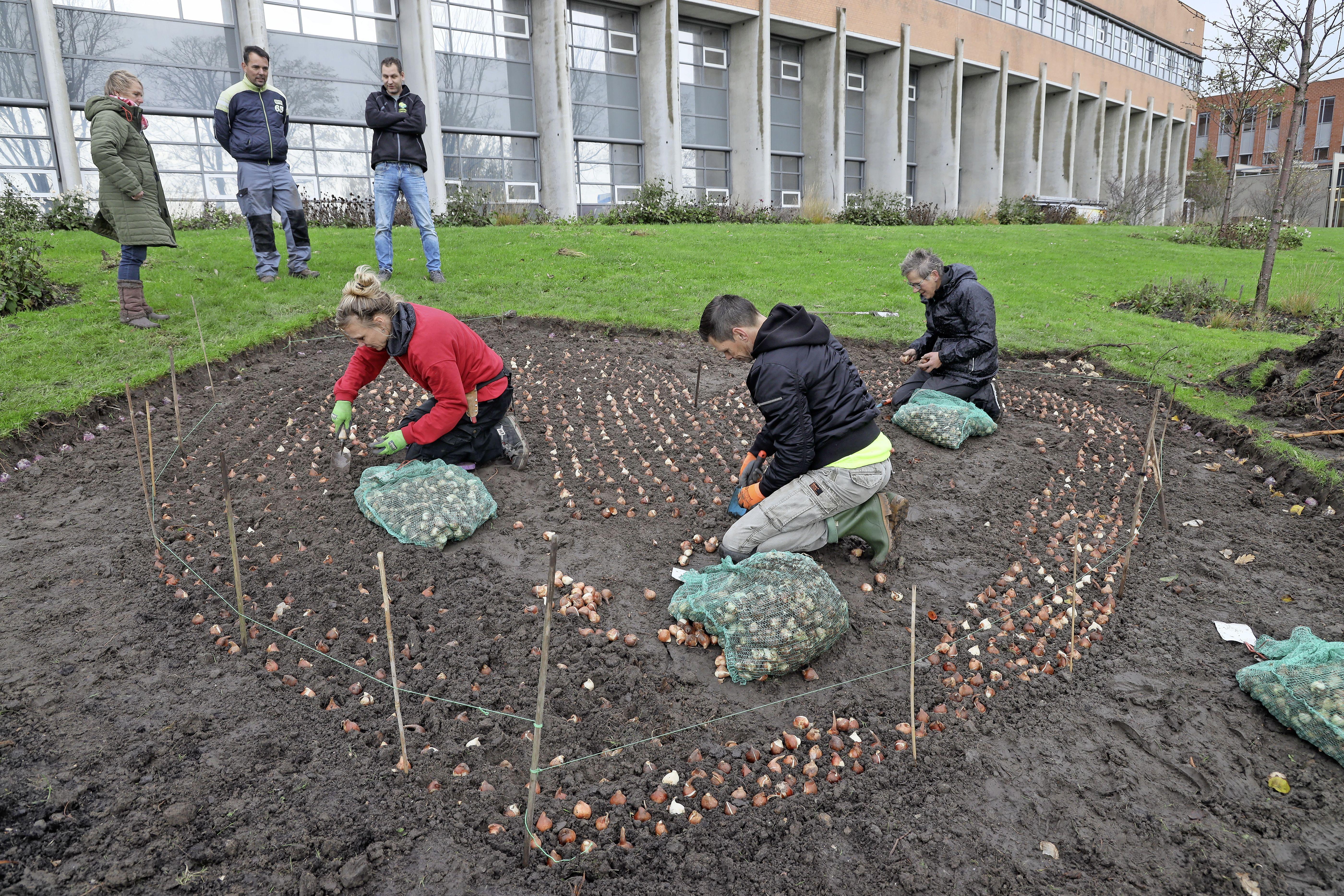 Geld Groen Fonds voor Stadslandbouw Hoorn en BAVO Schooltuin in Ursem