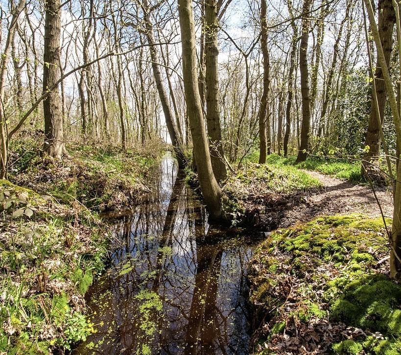Bouwen en het landschap sparen kan, stellen fractievoorzitters Noord-Hollandse coalitiepartijen