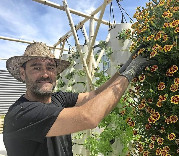 Aardbeien uit hartje Parijs: grootste 'stadsdakboerderij' van Europa teelt met de nieuwste technieken