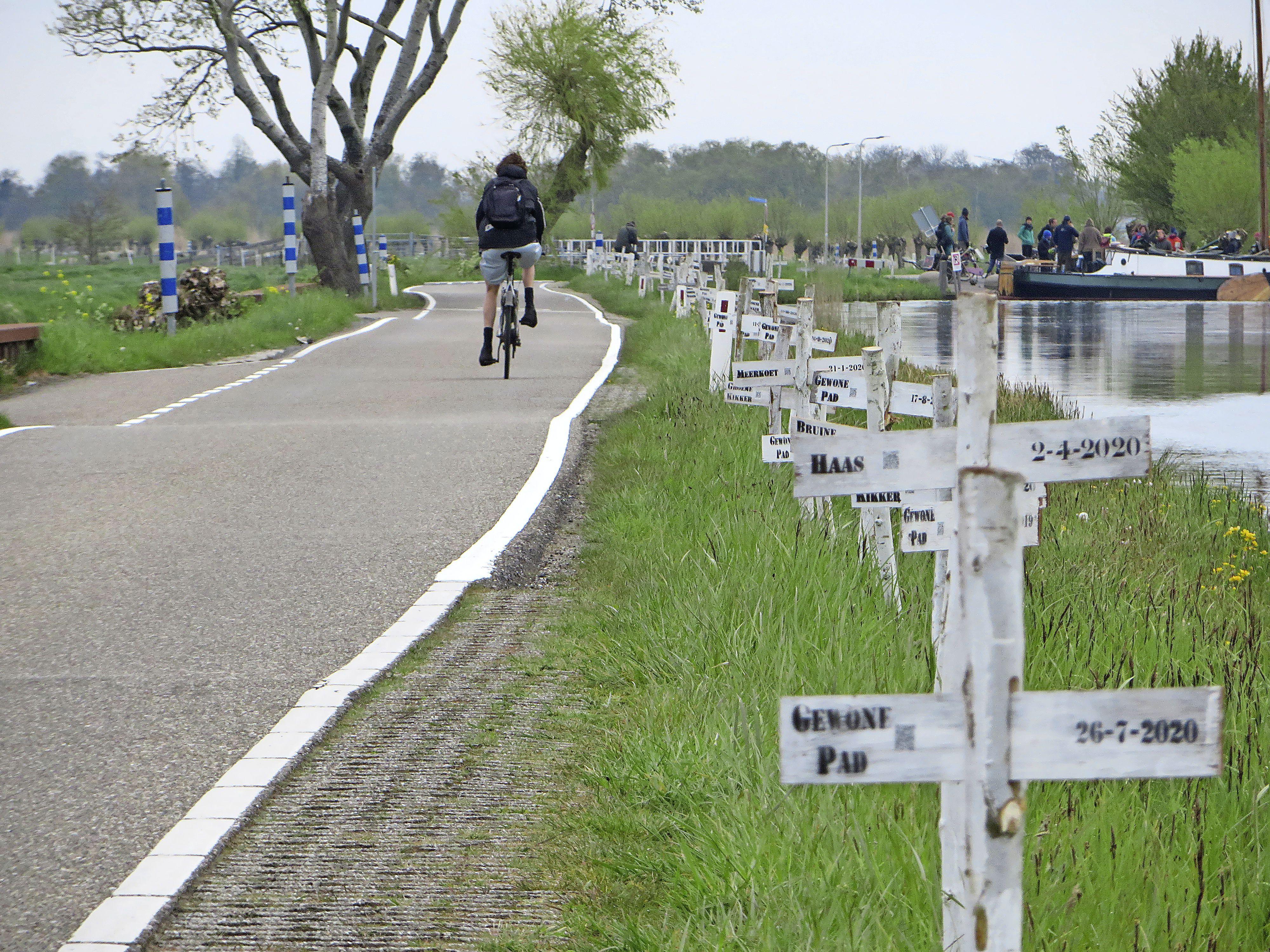 Protestactie met 642 kruisen, aandacht voor doodgereden dieren op de Ziendeweg in Aarlanderveen: 'Liever geen fietspad hier, dan ontstaat een dubbele rijbaan waar dieren overheen moeten'