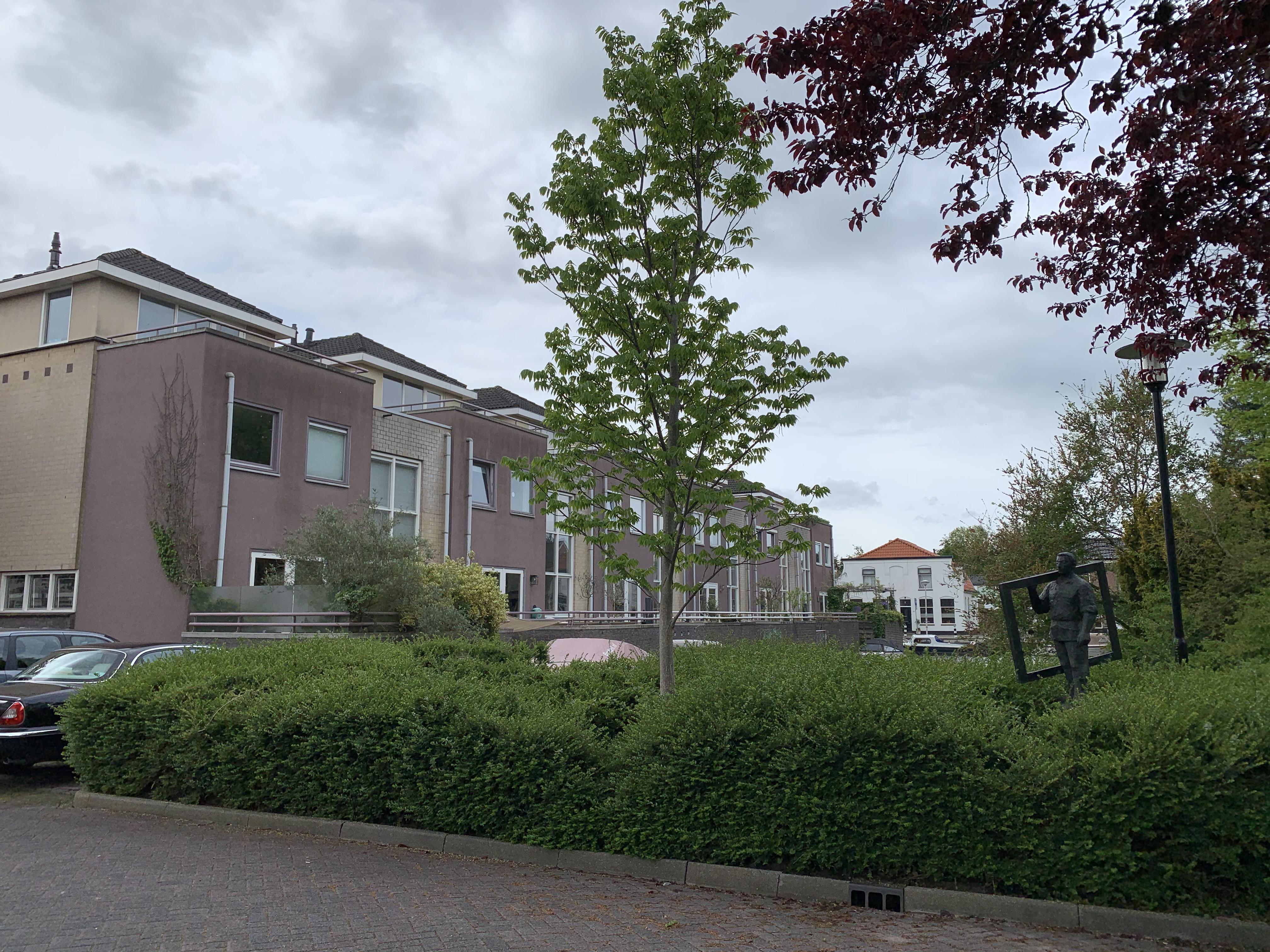 Uitspraak in zaak Hofzicht Hillegom: bewoners laagbouw moeten afvalcontainers pikken van appartementen ernaast