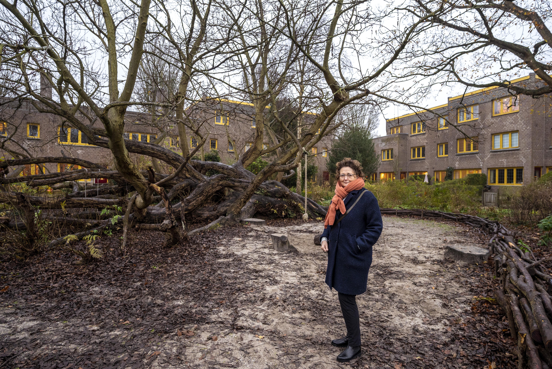 Roemruchte en geliefde Tuinwijk-Zuid in Haarlem nadert haar eeuwfeest; 'We nemen alle ongemakken voor lief'