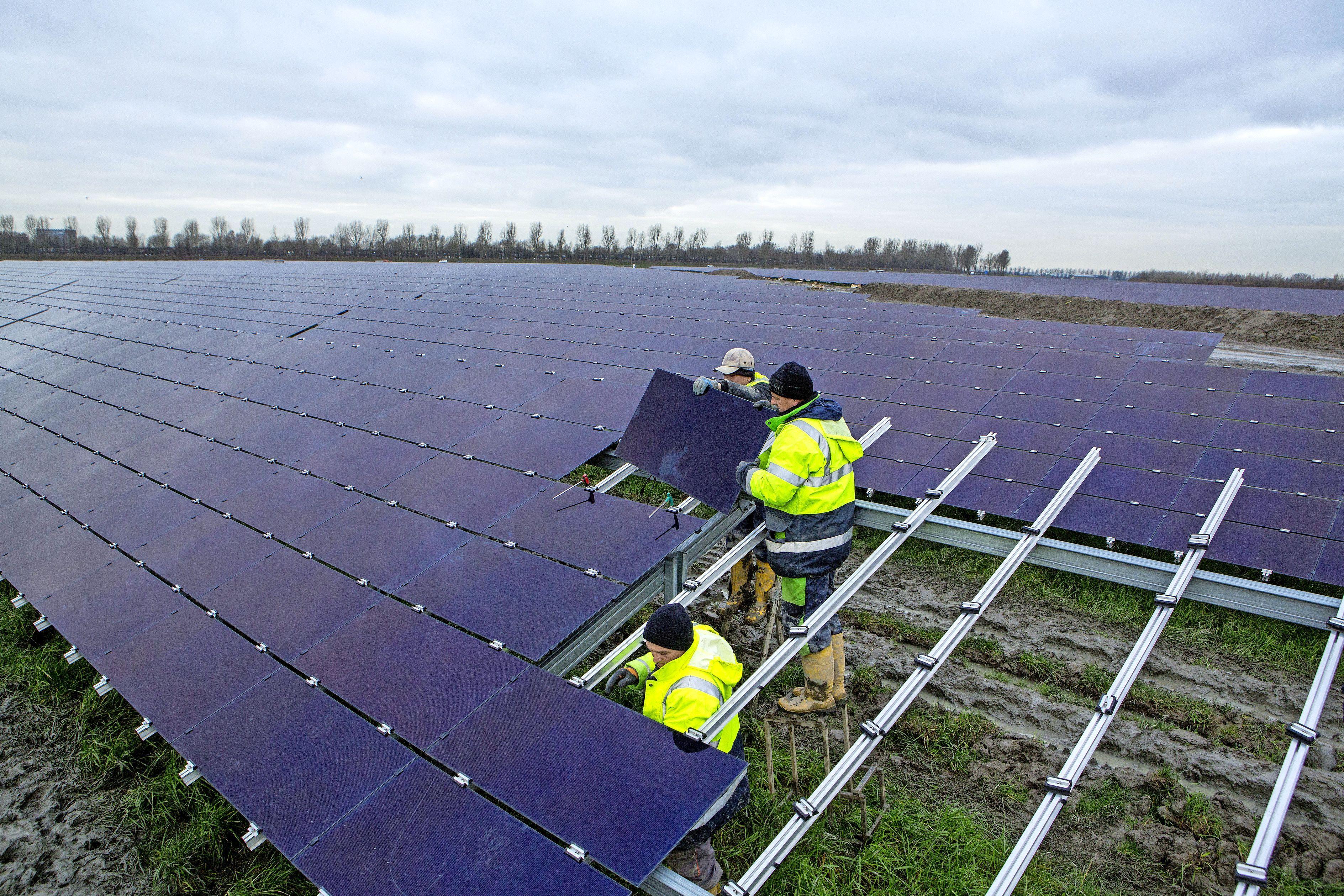 Koggenland wil zonneweide zelf bouwen. Voormalig bedrijventerrein Distriport krijgt nieuwe invulling