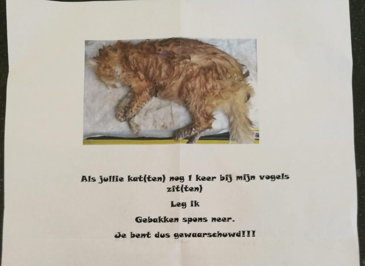 Vogelliefhebber dreigt katten in Grootebroek te vermoorden met gebakken spons