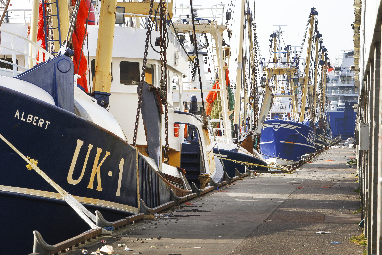 Visserijhavens lopen schade op: ook lege Britse kotters mogen er niet komen. Een uitzondering is IJmuiden