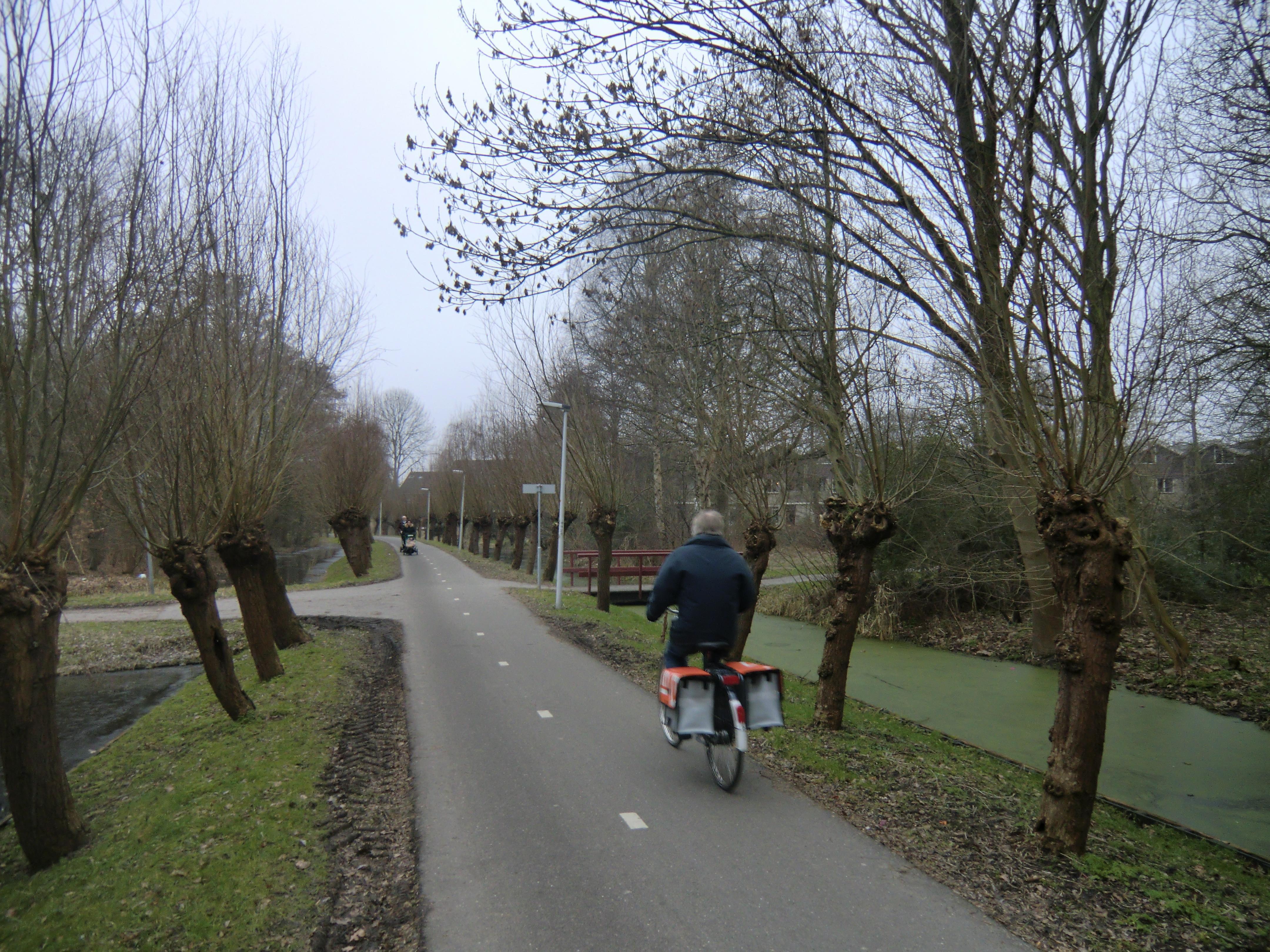 Camera's bij rondweg Merenwijk
