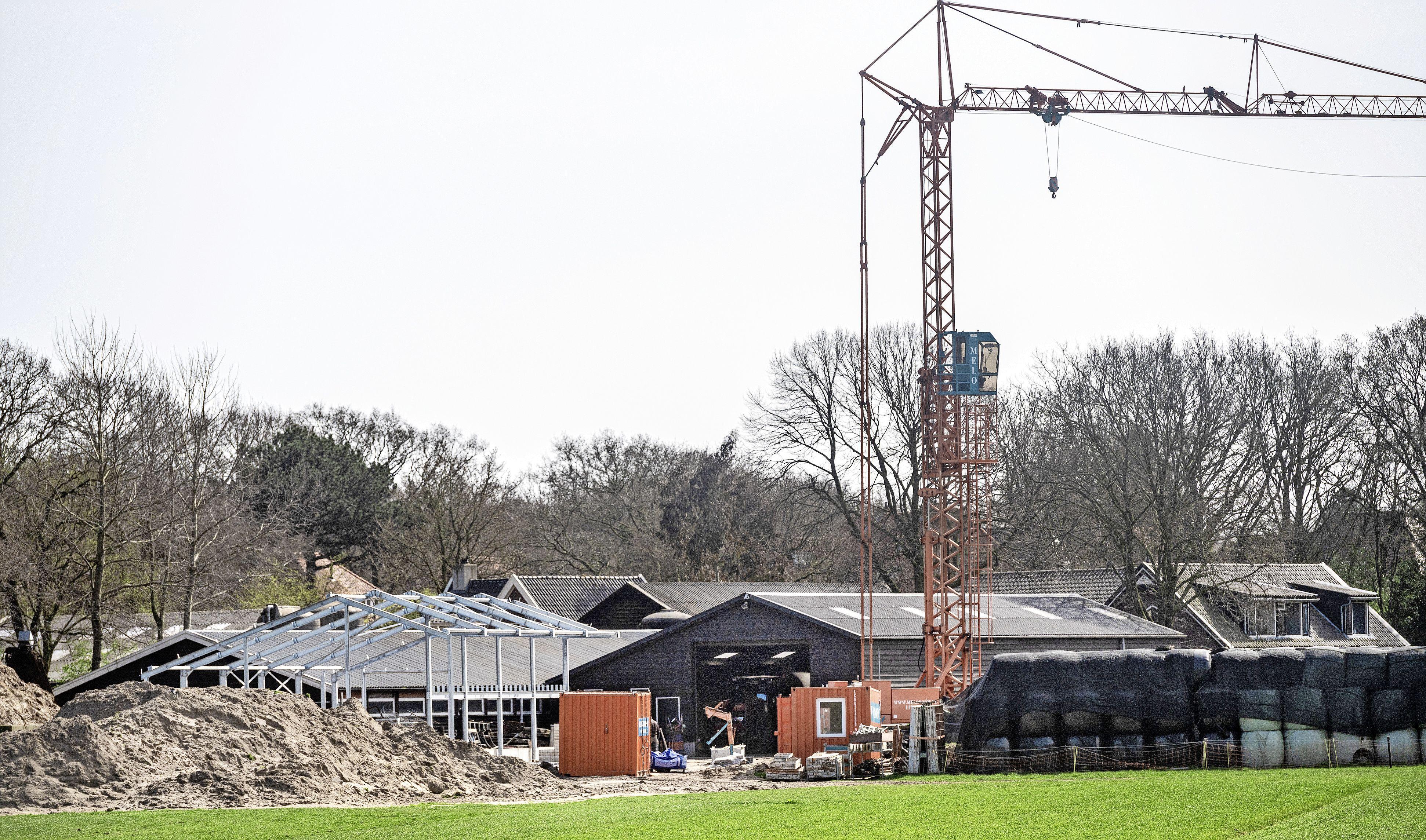 Jonge koeien van boerderij Westerhoeve in Santpoort-Zuid verhuizen naar nieuwe stal en maken plaats voor winkel