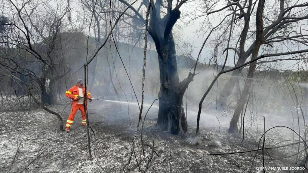 Brandweer Italië druk met bosbranden