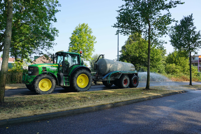 Water voor jong groen in Zaanstreek, maar plataan juicht