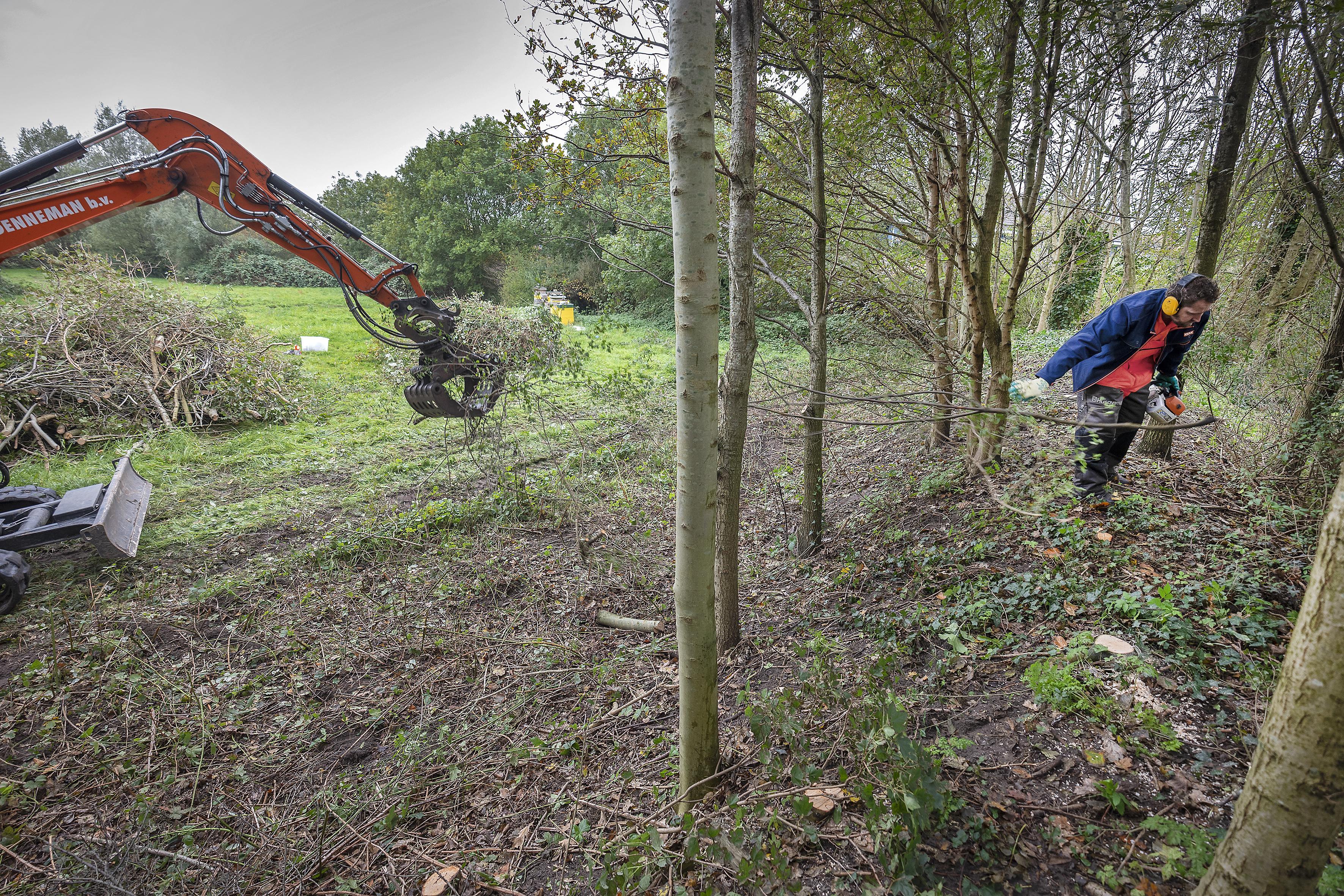 Snoeiwerkzaamheden Blekersveld Overveen op last van omgevingsdienst stilgelegd