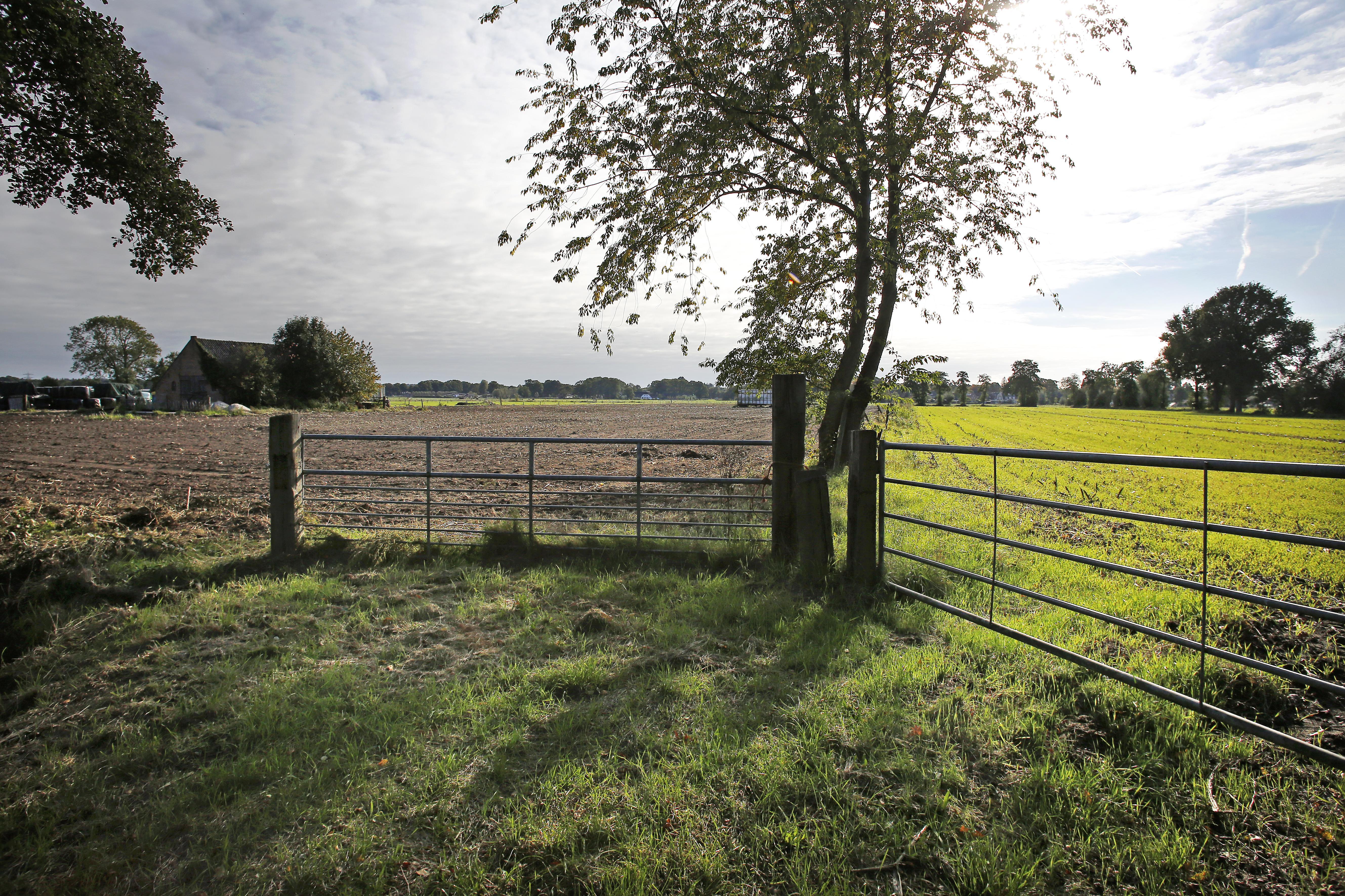 Soest hakt de knoop door: echt geen nieuwe boerderij aan de Peter van den Breemerweg voor Van Dorresteijn; In november ongetwijfeld weer stevige discussie in de gemeenteraad