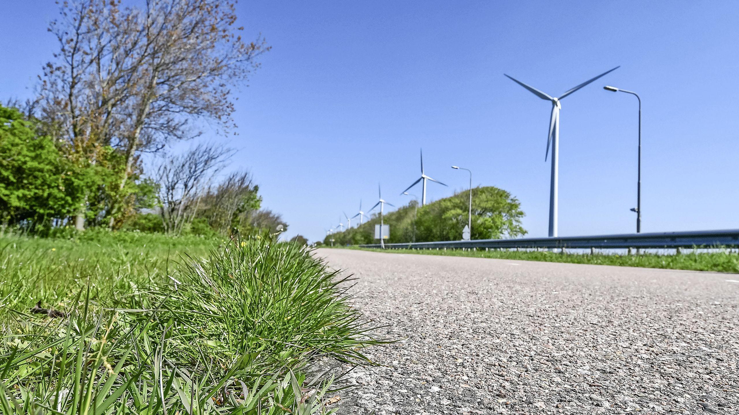 Vetplantjes op abri's, borden van geperst gras, Noord-Holland zet in op CO2-reductie op en langs de weg