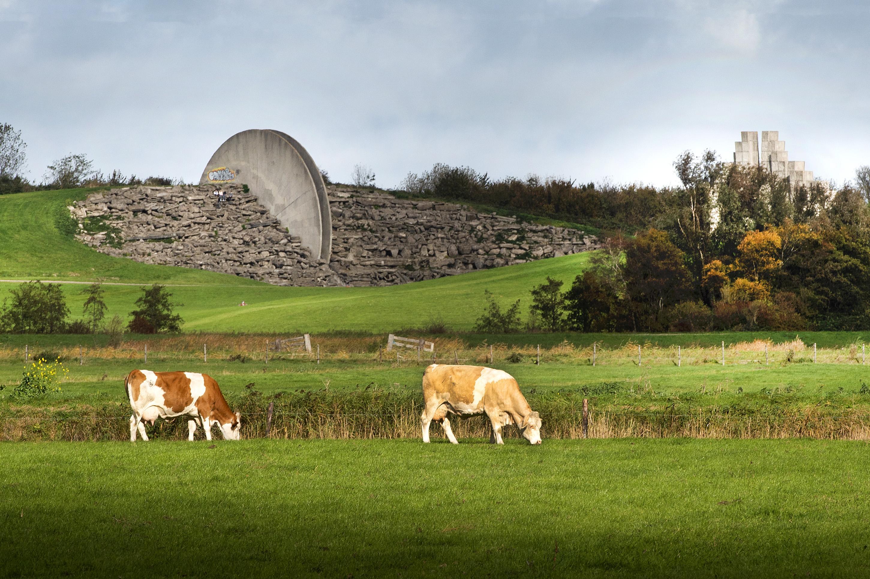 Recreatiegebied Spaarnwoude in beeld voor plaatsing windturbines