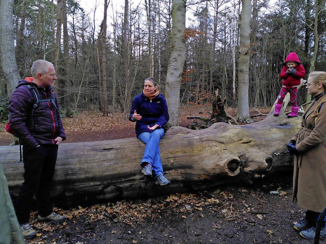 'Soest heeft meer oog voor financiën dan voor behoud bos Oude Tempel'; Volgens POS legt gemeente advies van Copijn om minder huizen te bouwen naast zich neer