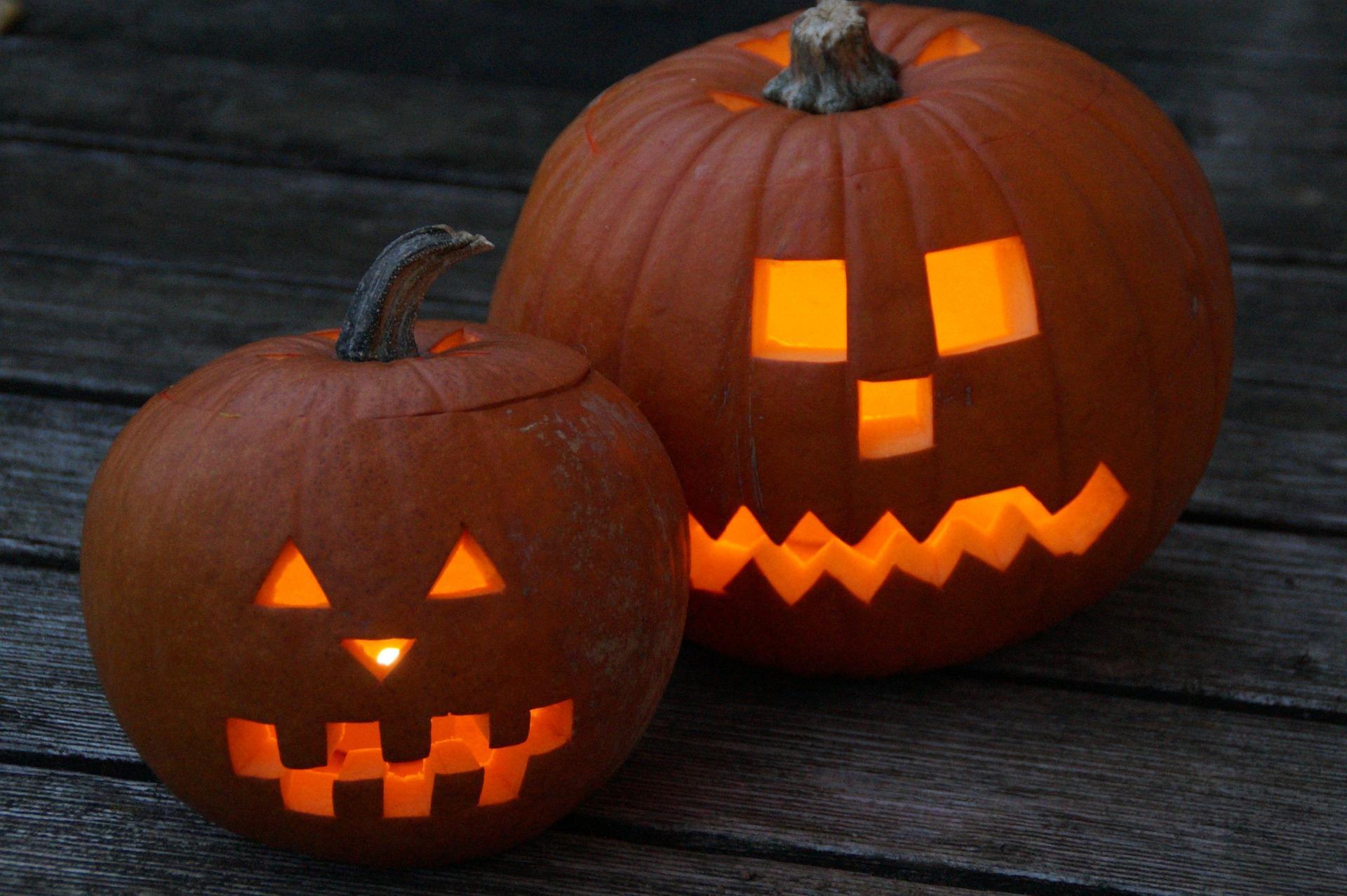 Halloweenfeestje in Halfweg: Politie treft 70 man in 8-persoons vakantiehuisje