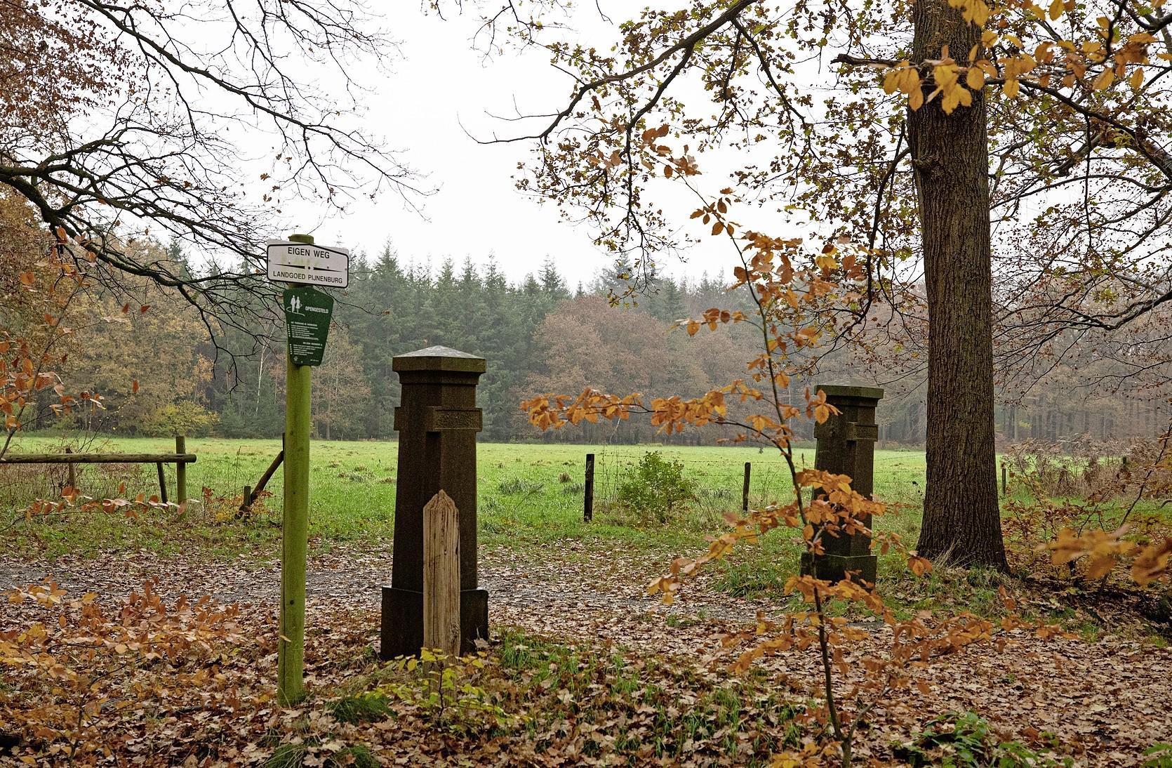 Theehuis Overbosch mag gebouwd worden; Landgoed Pijnenburg wint strijd om horeca in weiland bij Embranchementsweg