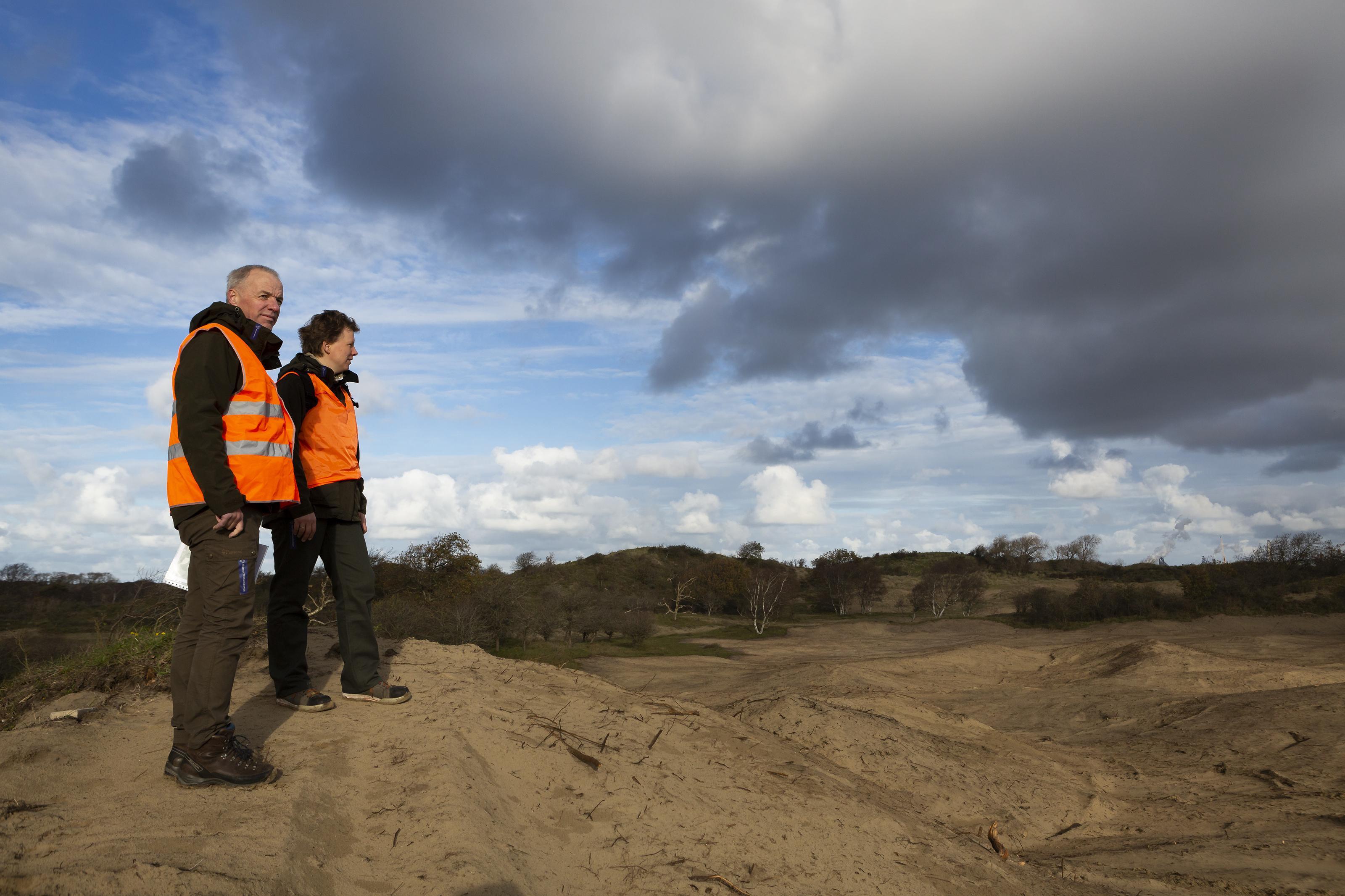 Natuurmonumenten bindt in Santpoortse duinen strijd met woekerende soorten aan: 'Mossen zeggen dat het goed is'