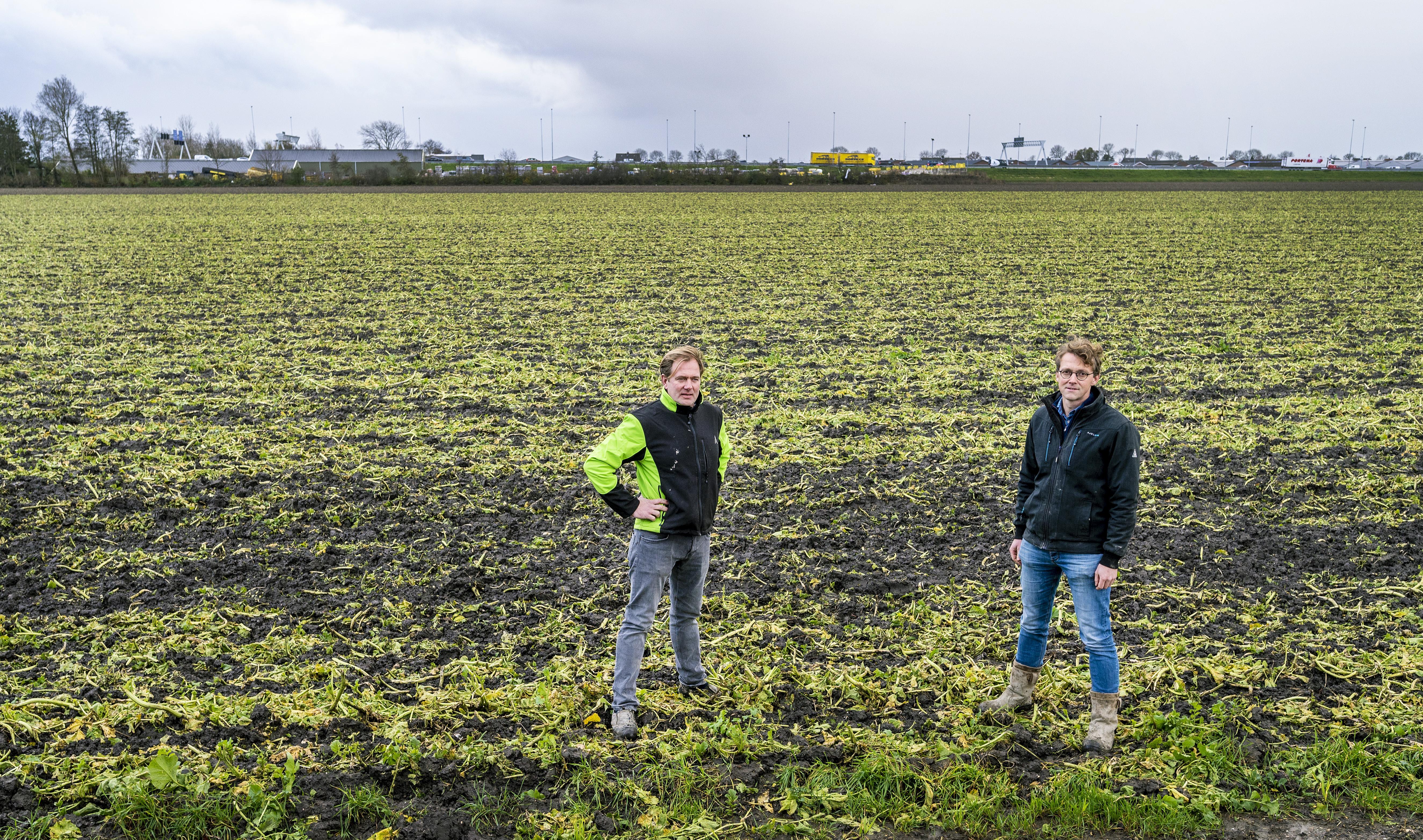 Boeren willen zonnepark inrichten bij Zwanenburg, overleg met dorpsbewoners over uitvoering is gaande