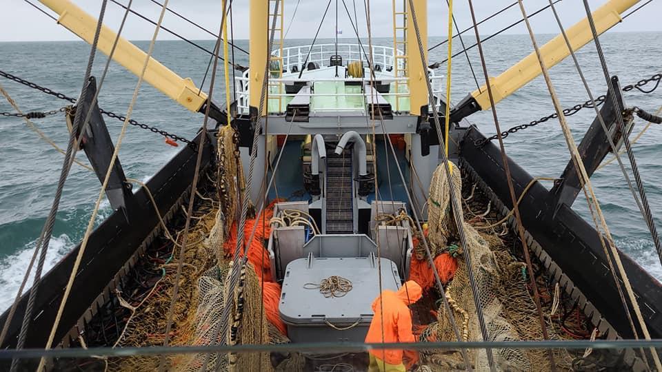 Laatste vissers nemen afscheid van pulsvissen: 'Dit is een gitzwarte dag'