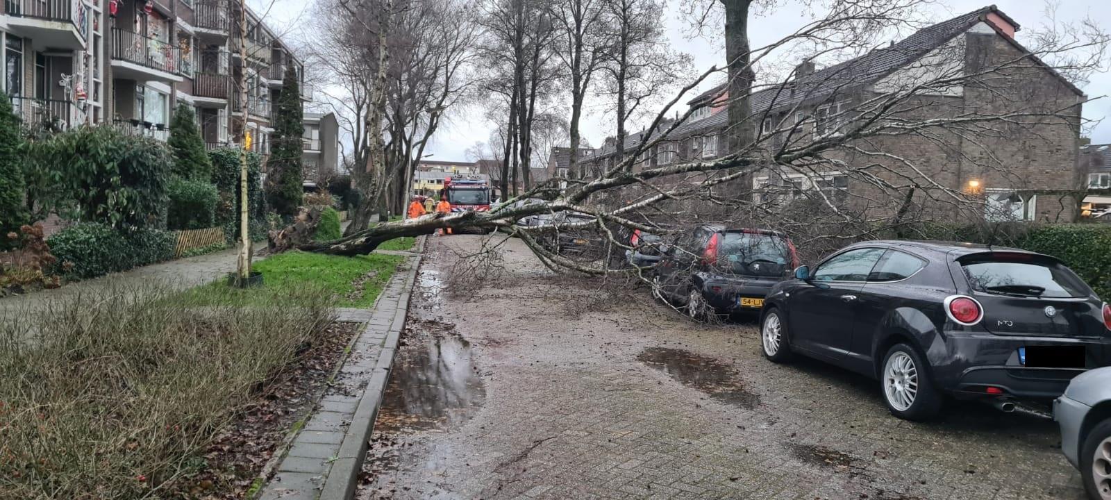 Stormschade: omgevallen bomen, vliegende dakpannen en een weggewaaide tent
