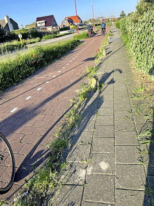 Al dat onkruid in toeristisch Julianadorp aan Zee is Piet Conijn een doorn in het oog. 'Ook toeristen vinden dat het er niet uitziet'